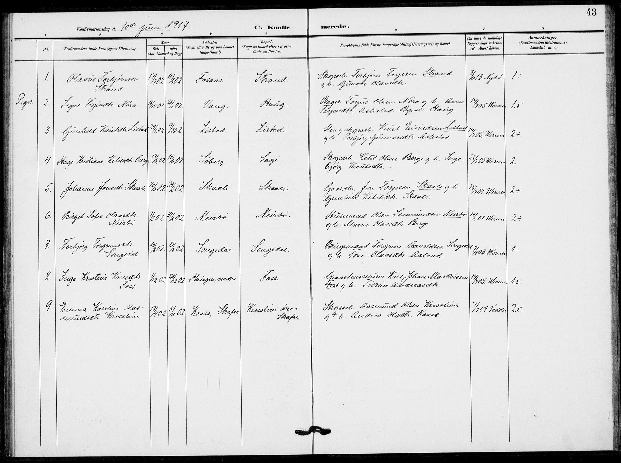 SAKO, Fyresdal kirkebøker, F/Fb/L0004: Ministerialbok nr. II 4, 1903-1920, s. 43