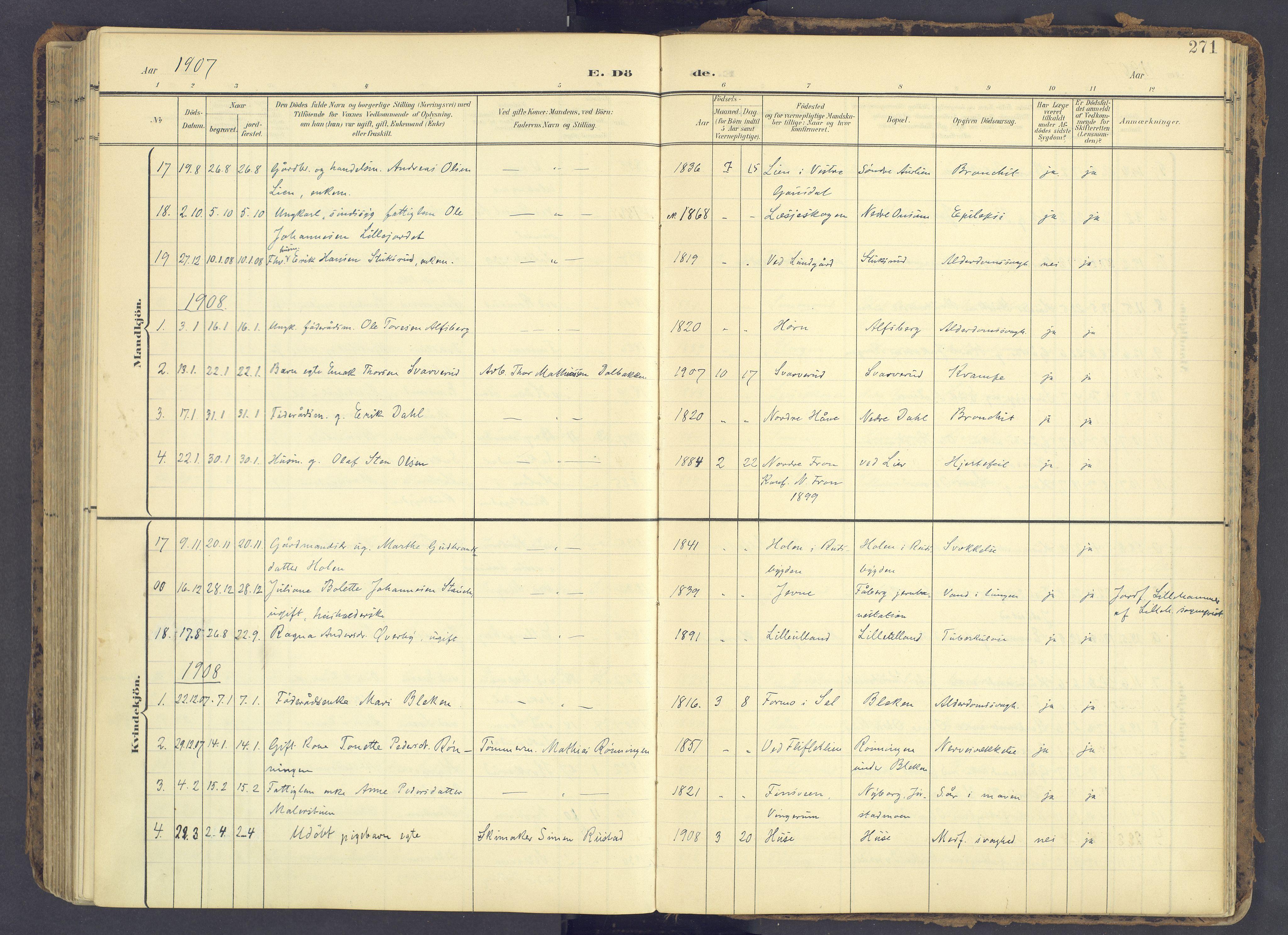 SAH, Fåberg prestekontor, Ministerialbok nr. 12, 1899-1915, s. 271