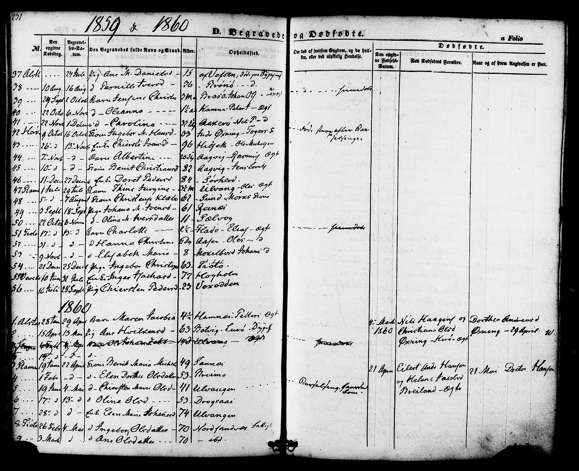 SAT, Ministerialprotokoller, klokkerbøker og fødselsregistre - Nordland, 830/L0448: Ministerialbok nr. 830A12, 1855-1878, s. 231