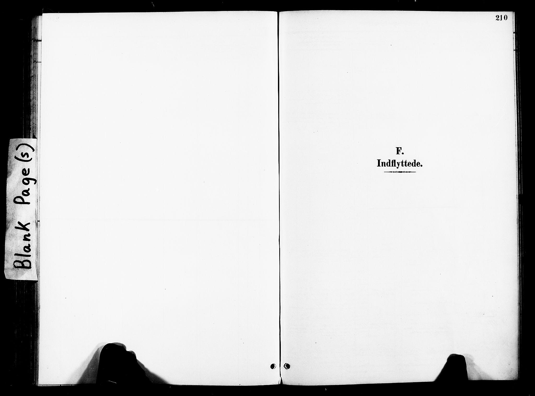 SAT, Ministerialprotokoller, klokkerbøker og fødselsregistre - Nord-Trøndelag, 739/L0372: Ministerialbok nr. 739A04, 1895-1903, s. 210
