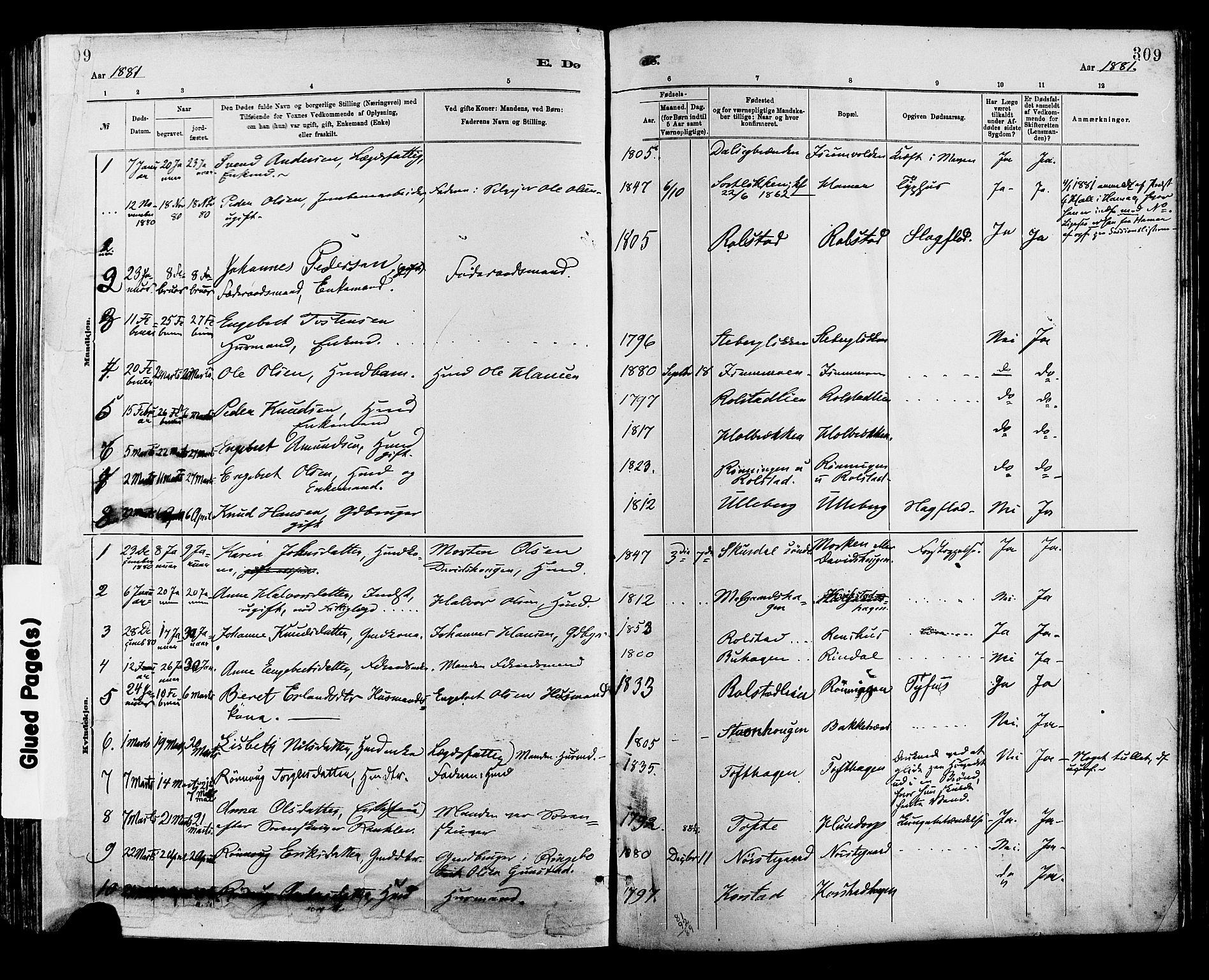 SAH, Sør-Fron prestekontor, H/Ha/Haa/L0003: Ministerialbok nr. 3, 1881-1897, s. 309