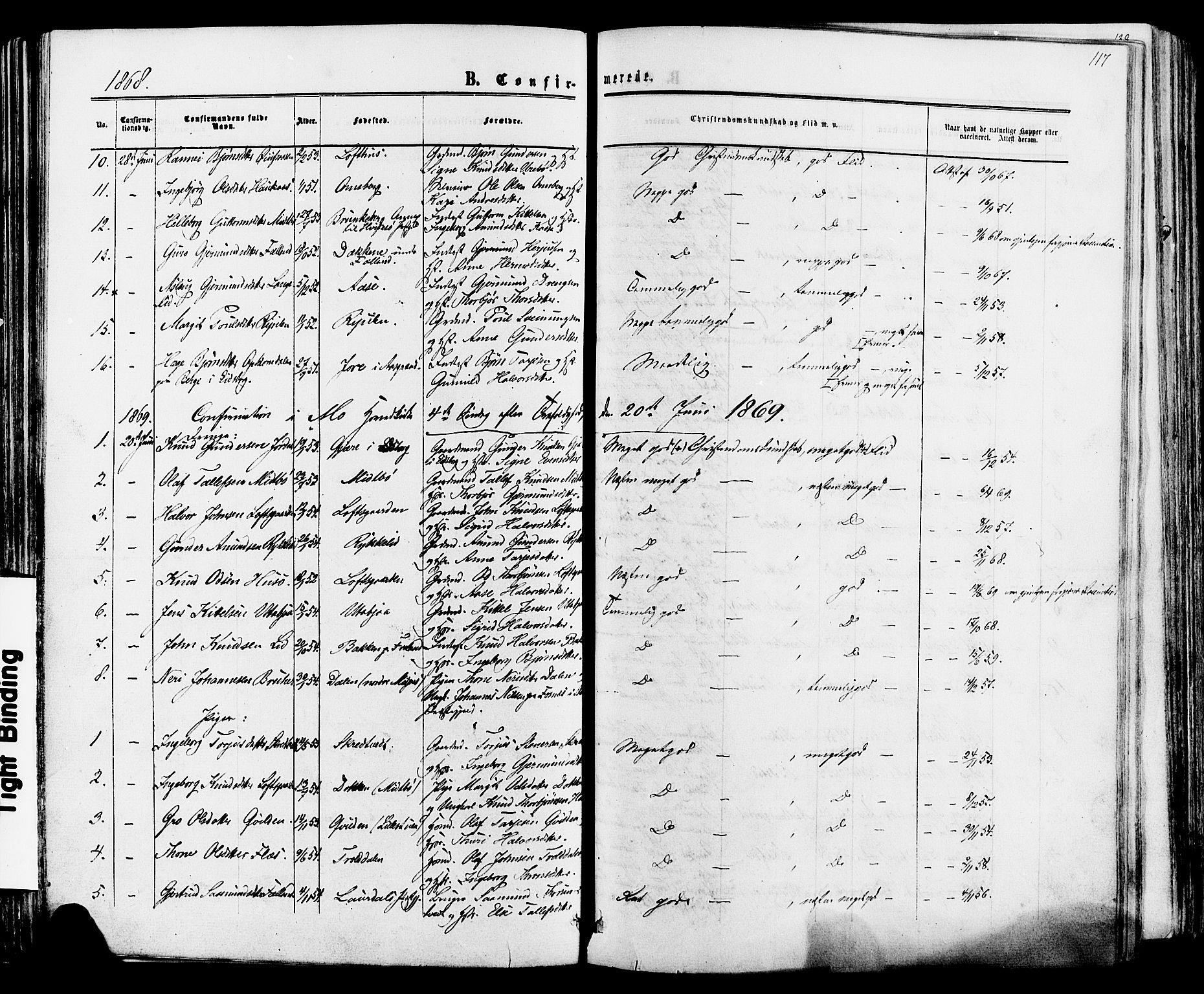 SAKO, Mo kirkebøker, F/Fa/L0006: Ministerialbok nr. I 6, 1865-1885, s. 117