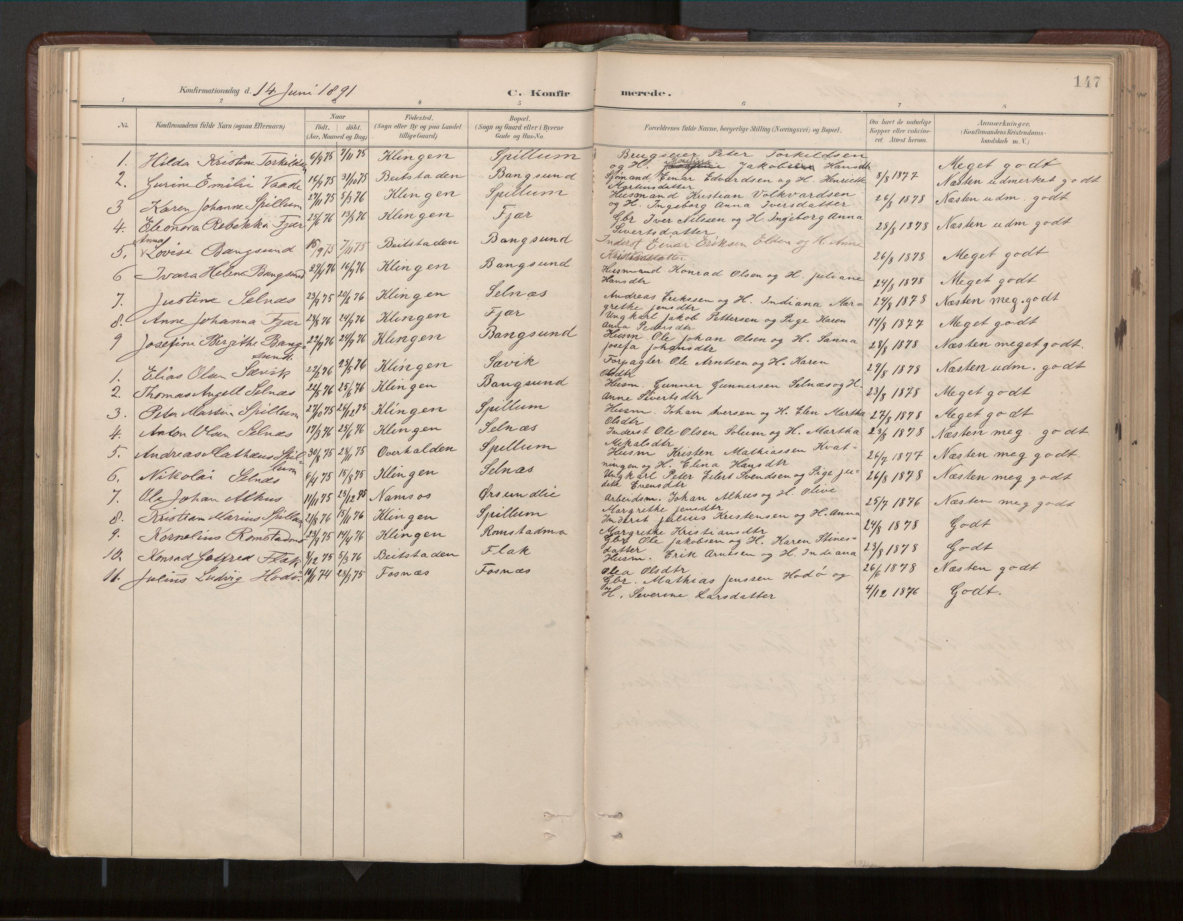 SAT, Ministerialprotokoller, klokkerbøker og fødselsregistre - Nord-Trøndelag, 770/L0589: Ministerialbok nr. 770A03, 1887-1929, s. 147
