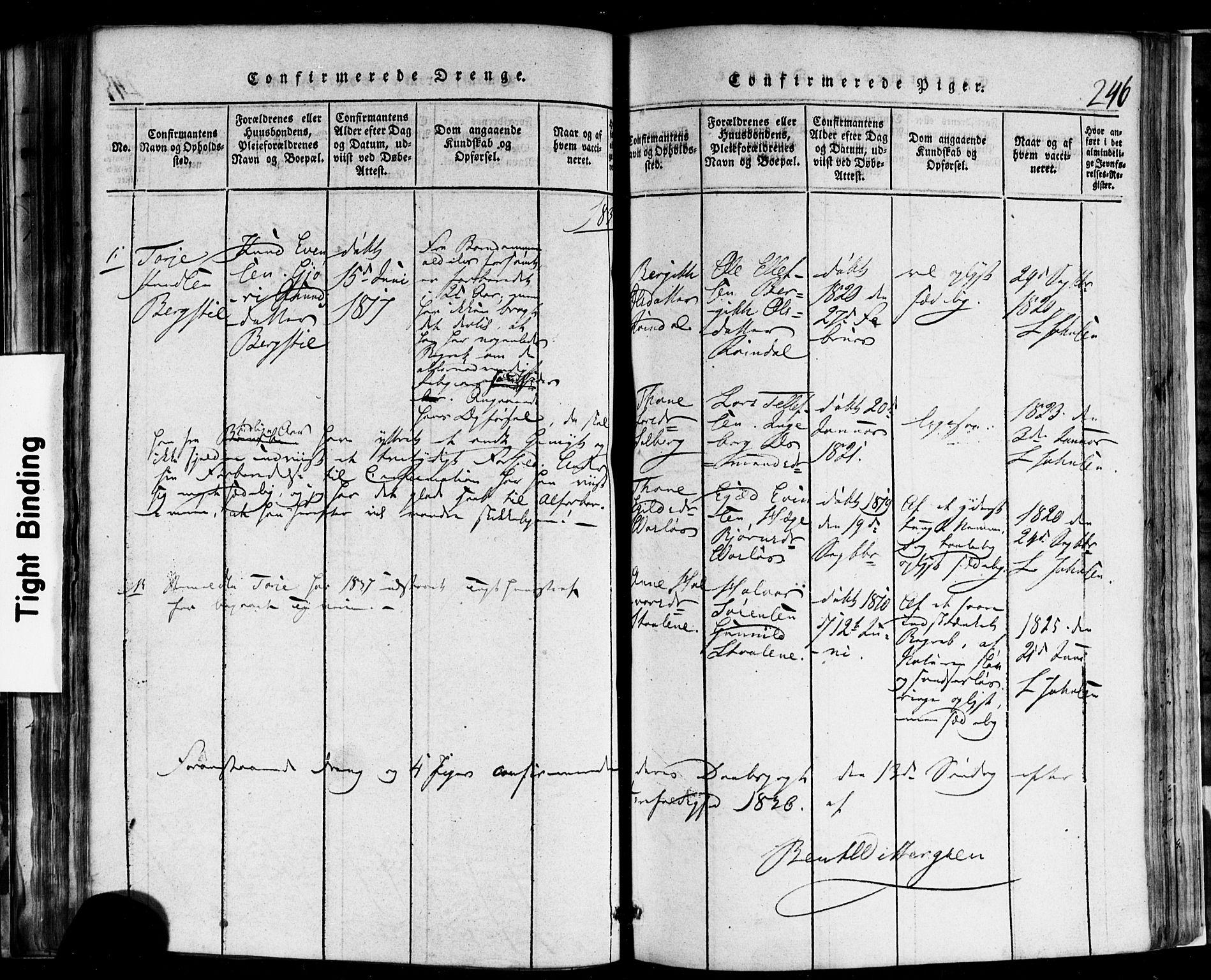 SAKO, Rauland kirkebøker, F/Fa/L0002: Ministerialbok nr. 2, 1815-1860, s. 246