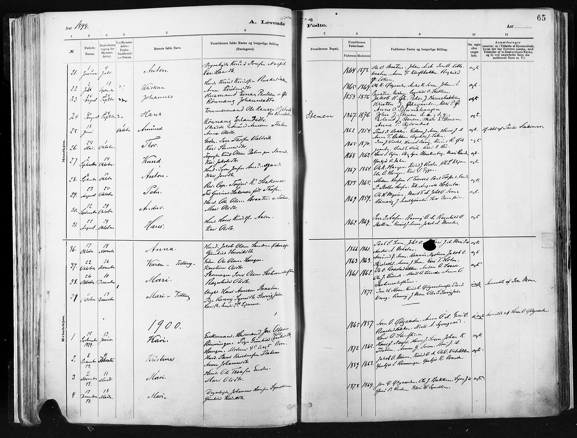 SAH, Vågå prestekontor, Ministerialbok nr. 9, 1886-1904, s. 65