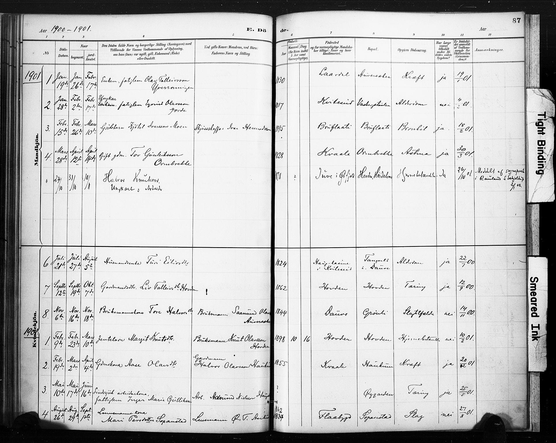 SAKO, Lårdal kirkebøker, F/Fc/L0002: Ministerialbok nr. III 2, 1887-1906, s. 87