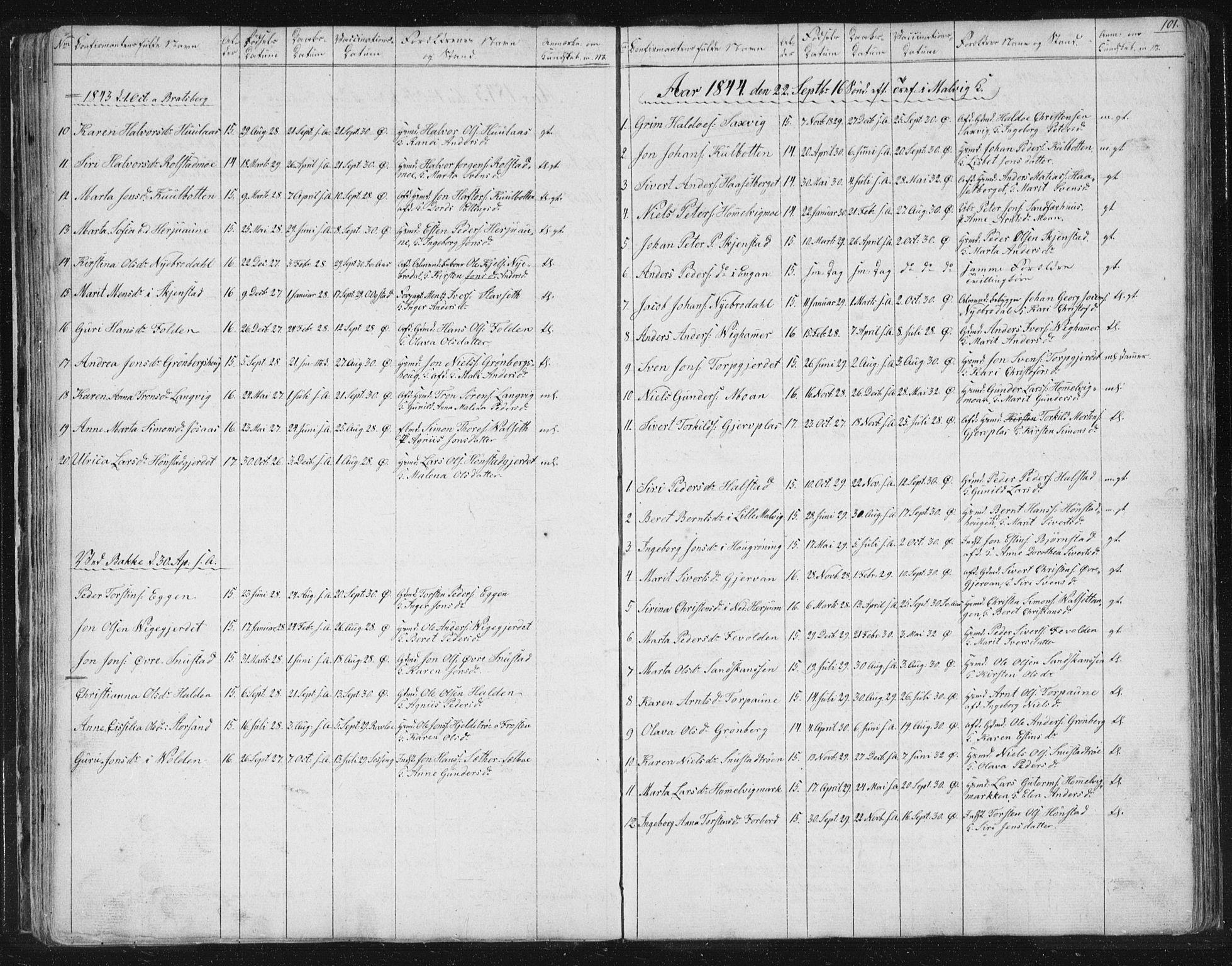 SAT, Ministerialprotokoller, klokkerbøker og fødselsregistre - Sør-Trøndelag, 616/L0406: Ministerialbok nr. 616A03, 1843-1879, s. 101