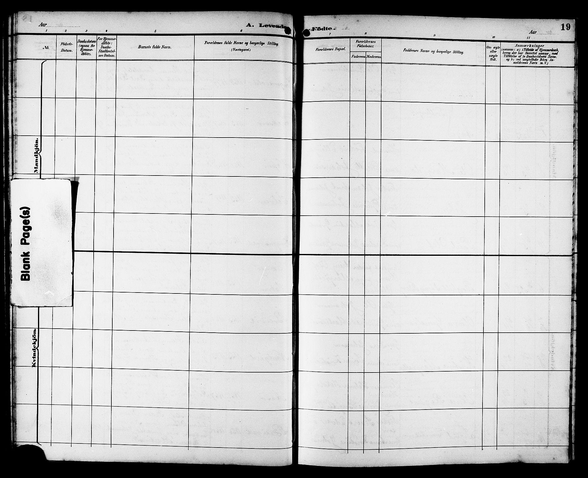 SAT, Ministerialprotokoller, klokkerbøker og fødselsregistre - Sør-Trøndelag, 662/L0757: Klokkerbok nr. 662C02, 1892-1918, s. 19