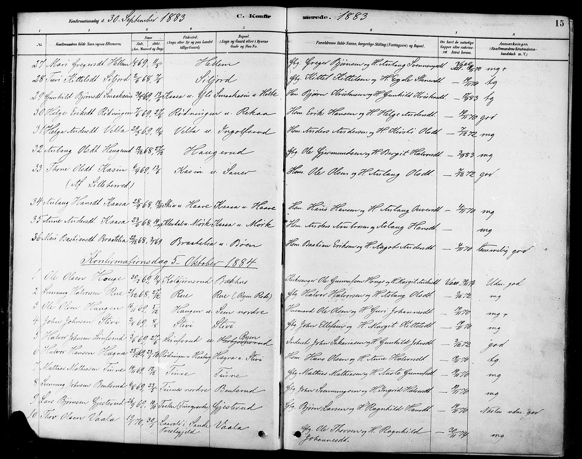 SAKO, Heddal kirkebøker, F/Fa/L0009: Ministerialbok nr. I 9, 1878-1903, s. 15