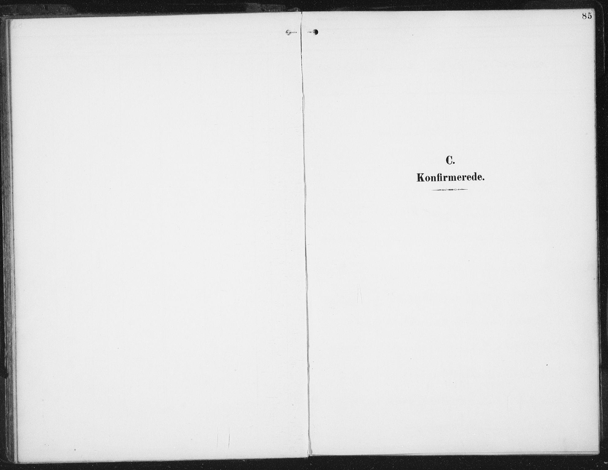 SAT, Ministerialprotokoller, klokkerbøker og fødselsregistre - Sør-Trøndelag, 674/L0872: Ministerialbok nr. 674A04, 1897-1907, s. 85