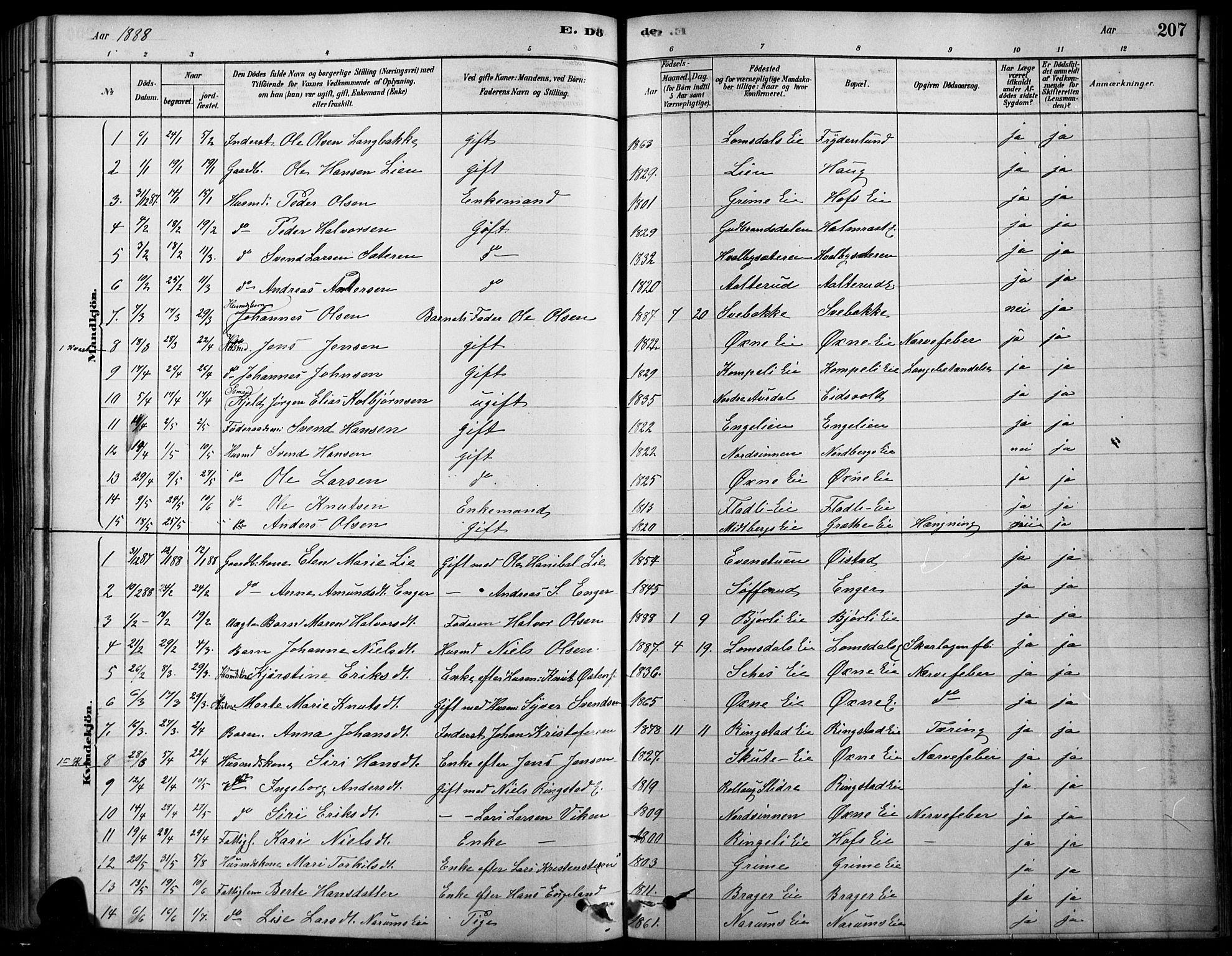 SAH, Søndre Land prestekontor, K/L0003: Ministerialbok nr. 3, 1878-1894, s. 207