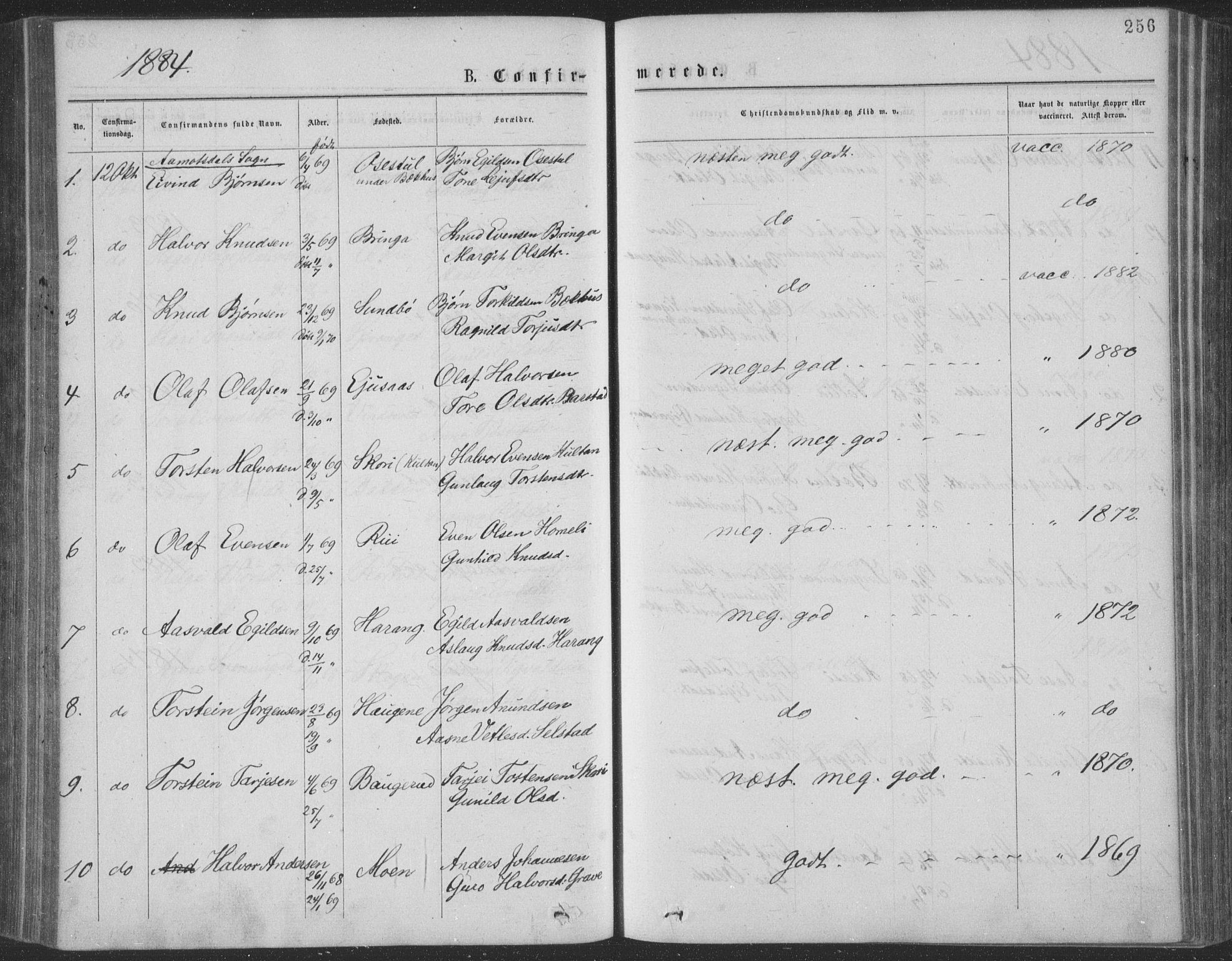 SAKO, Seljord kirkebøker, F/Fa/L0014: Ministerialbok nr. I 14, 1877-1886, s. 256