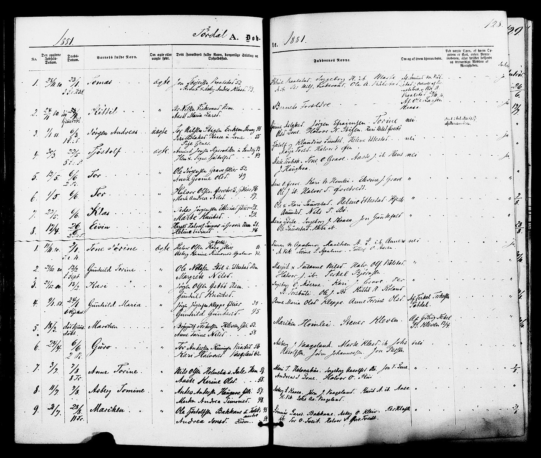 SAKO, Drangedal kirkebøker, F/Fa/L0009: Ministerialbok nr. 9 /2, 1872-1884, s. 128