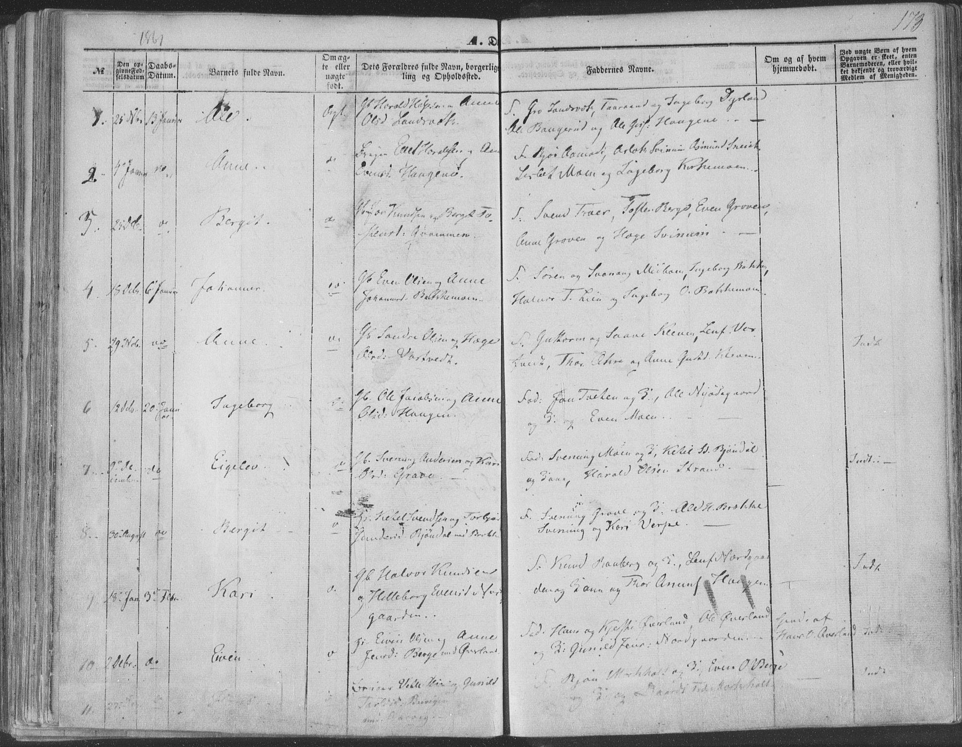 SAKO, Seljord kirkebøker, F/Fa/L012a: Ministerialbok nr. I 12A, 1850-1865, s. 173