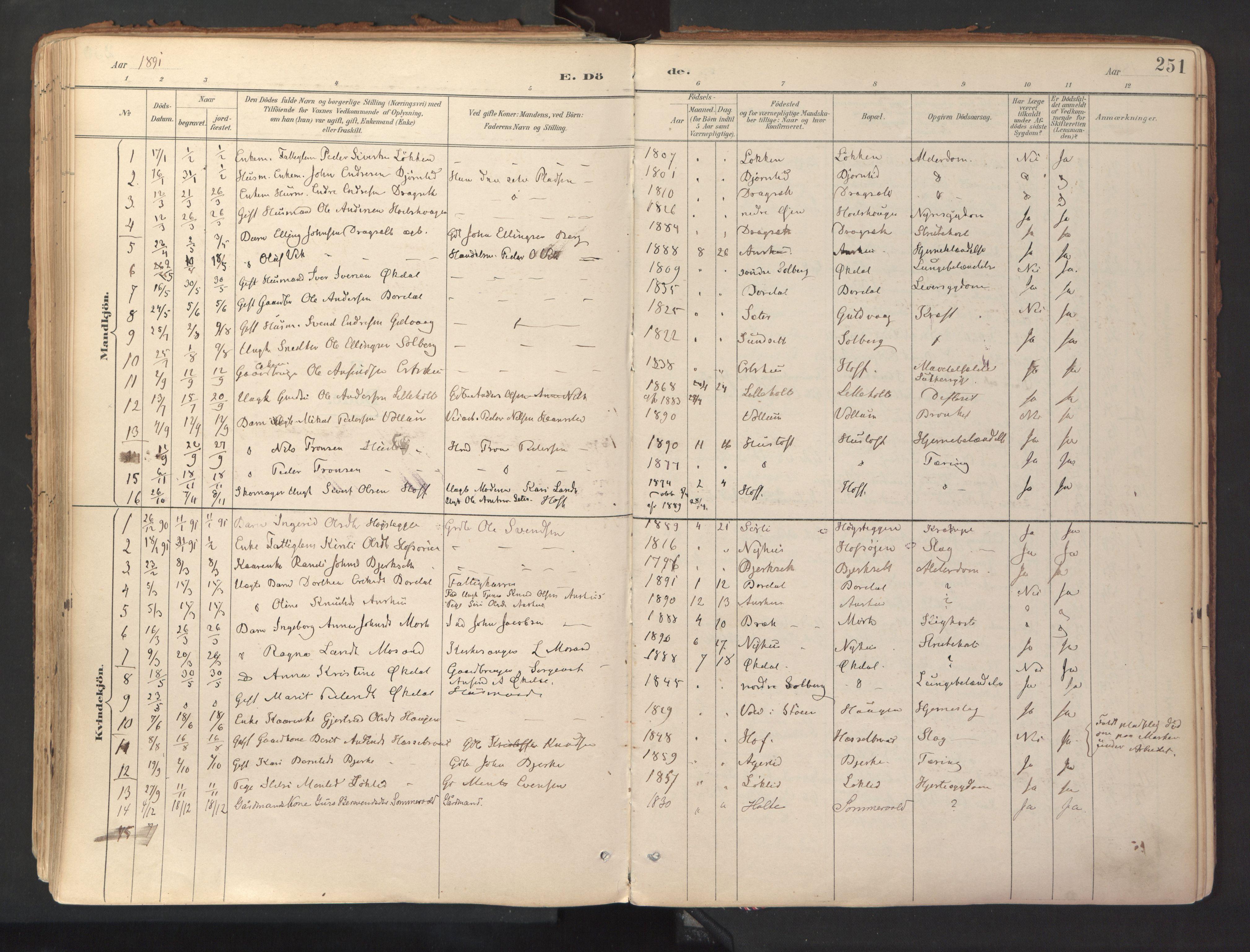 SAT, Ministerialprotokoller, klokkerbøker og fødselsregistre - Sør-Trøndelag, 689/L1041: Ministerialbok nr. 689A06, 1891-1923, s. 251