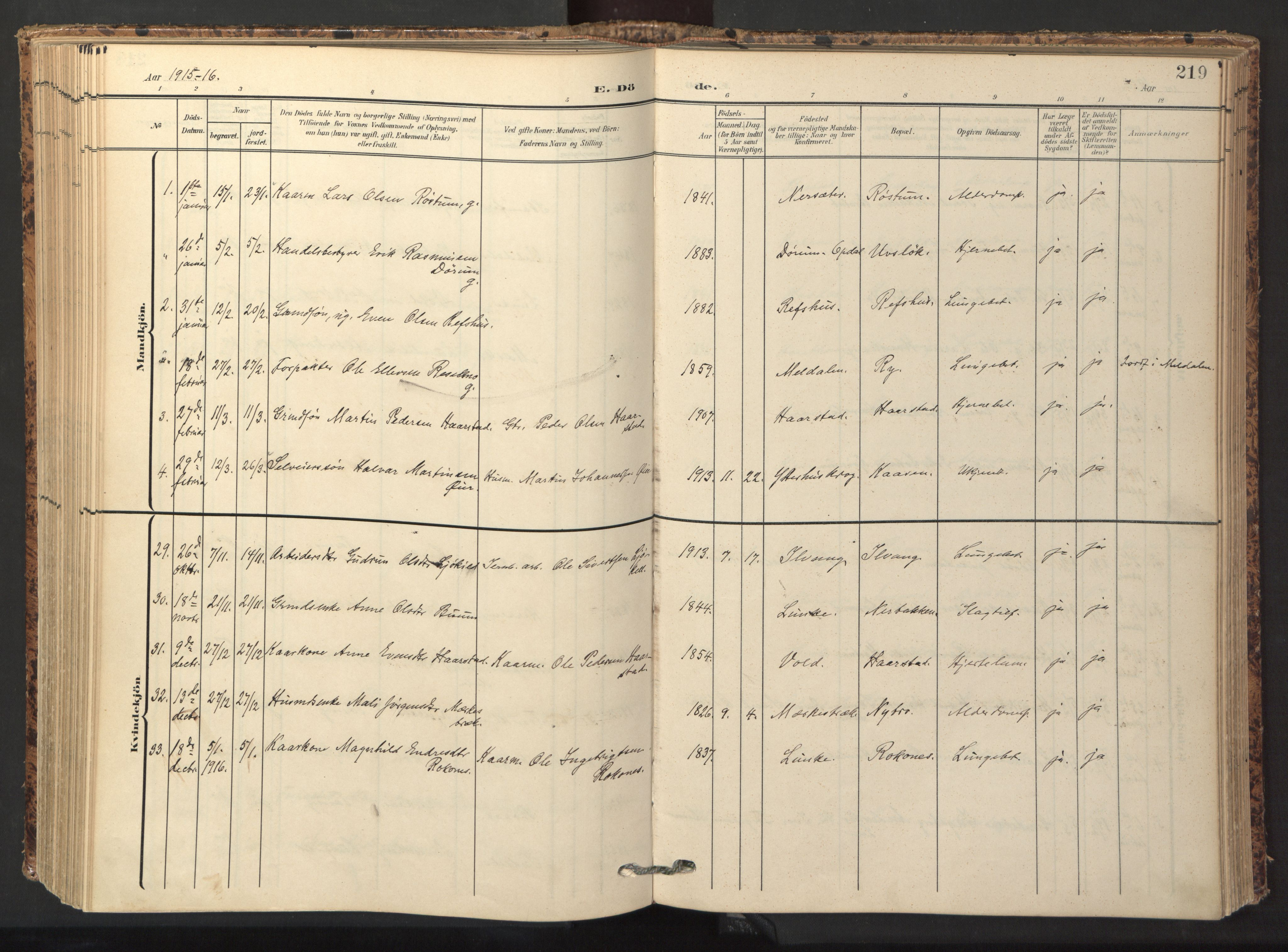 SAT, Ministerialprotokoller, klokkerbøker og fødselsregistre - Sør-Trøndelag, 674/L0873: Ministerialbok nr. 674A05, 1908-1923, s. 219
