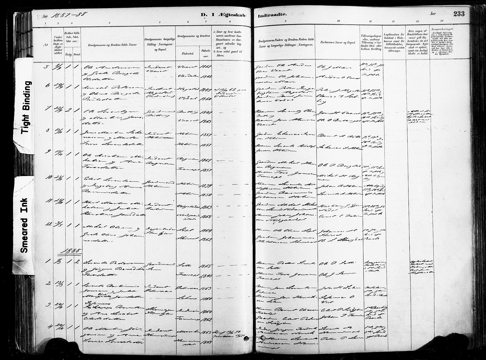 SAT, Ministerialprotokoller, klokkerbøker og fødselsregistre - Nord-Trøndelag, 735/L0351: Ministerialbok nr. 735A10, 1884-1908, s. 233