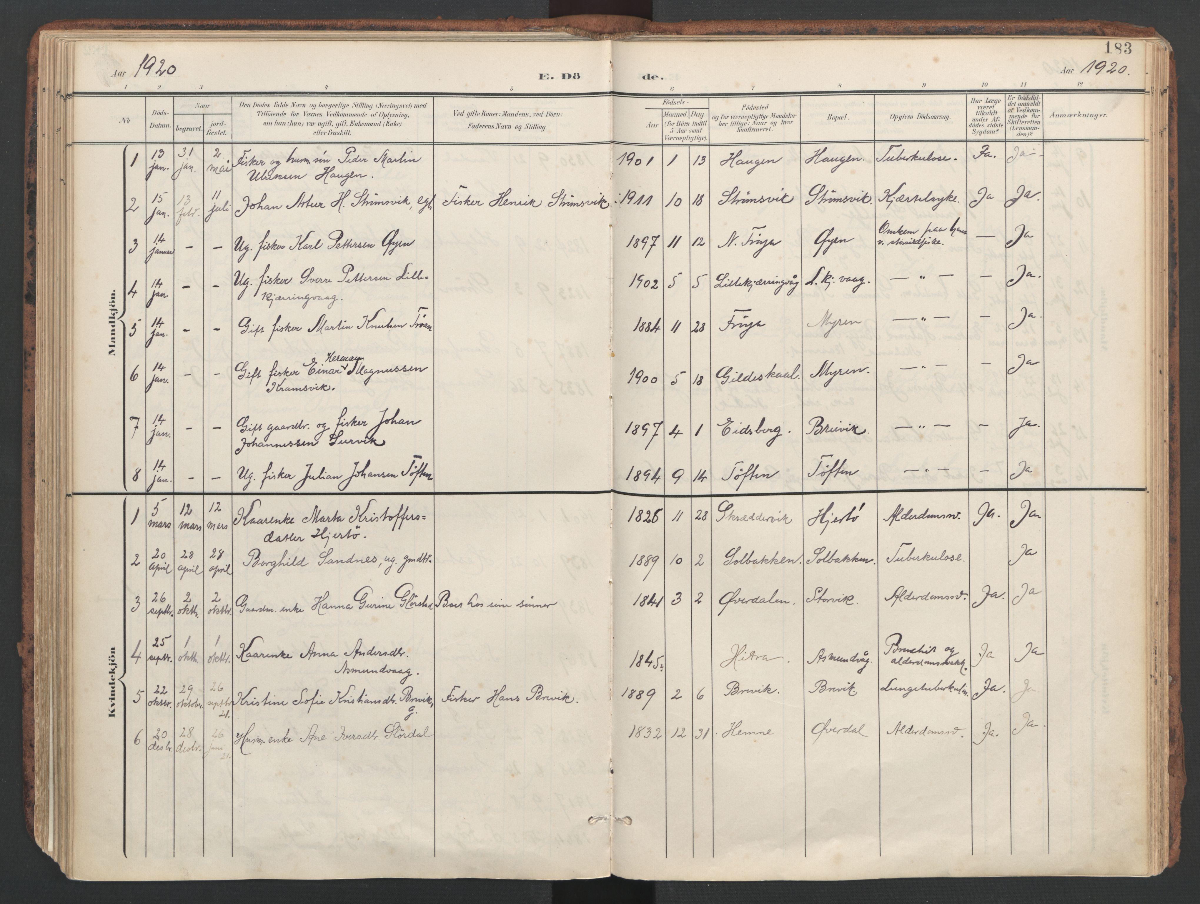 SAT, Ministerialprotokoller, klokkerbøker og fødselsregistre - Sør-Trøndelag, 634/L0537: Ministerialbok nr. 634A13, 1896-1922, s. 183