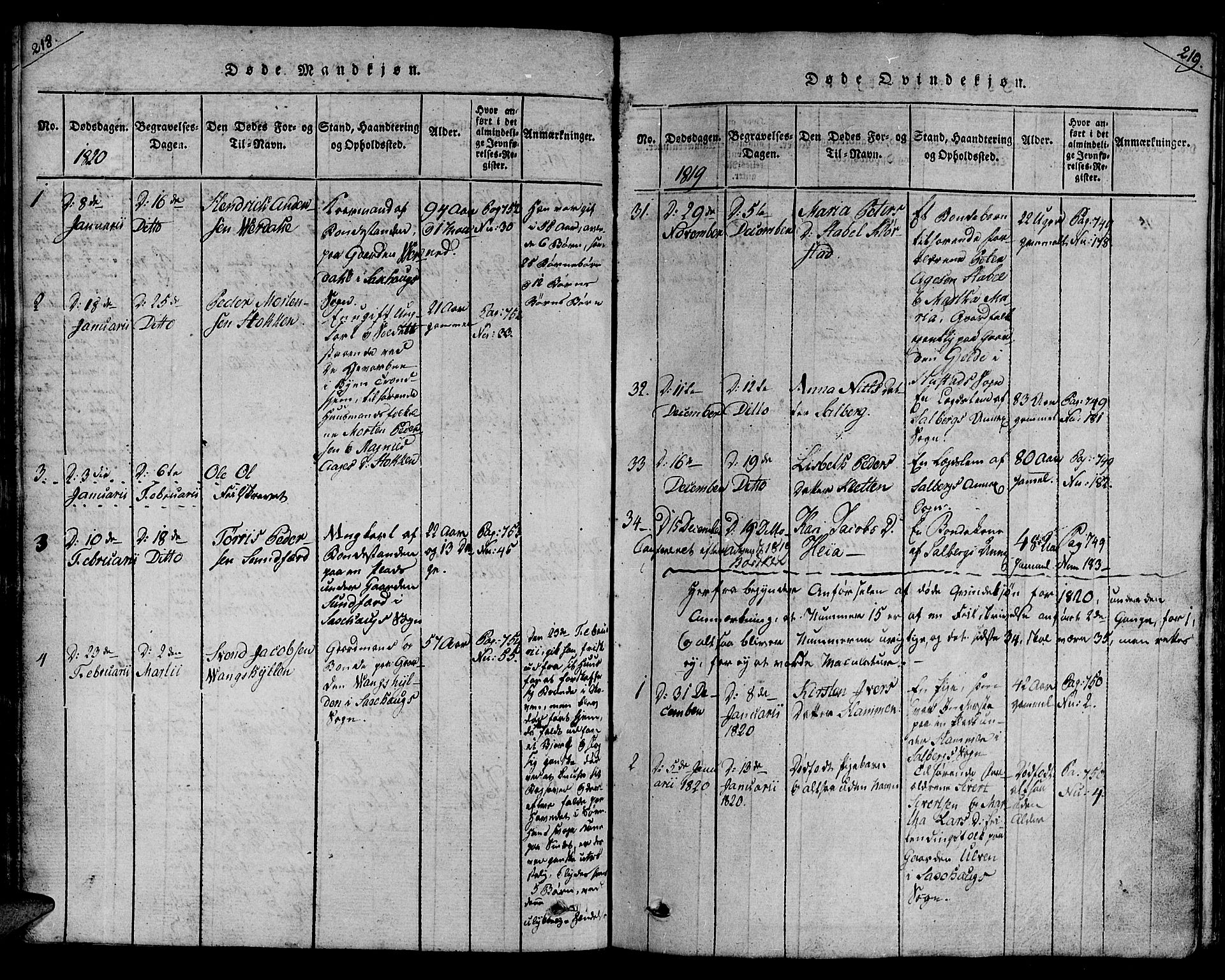 SAT, Ministerialprotokoller, klokkerbøker og fødselsregistre - Nord-Trøndelag, 730/L0275: Ministerialbok nr. 730A04, 1816-1822, s. 218-219