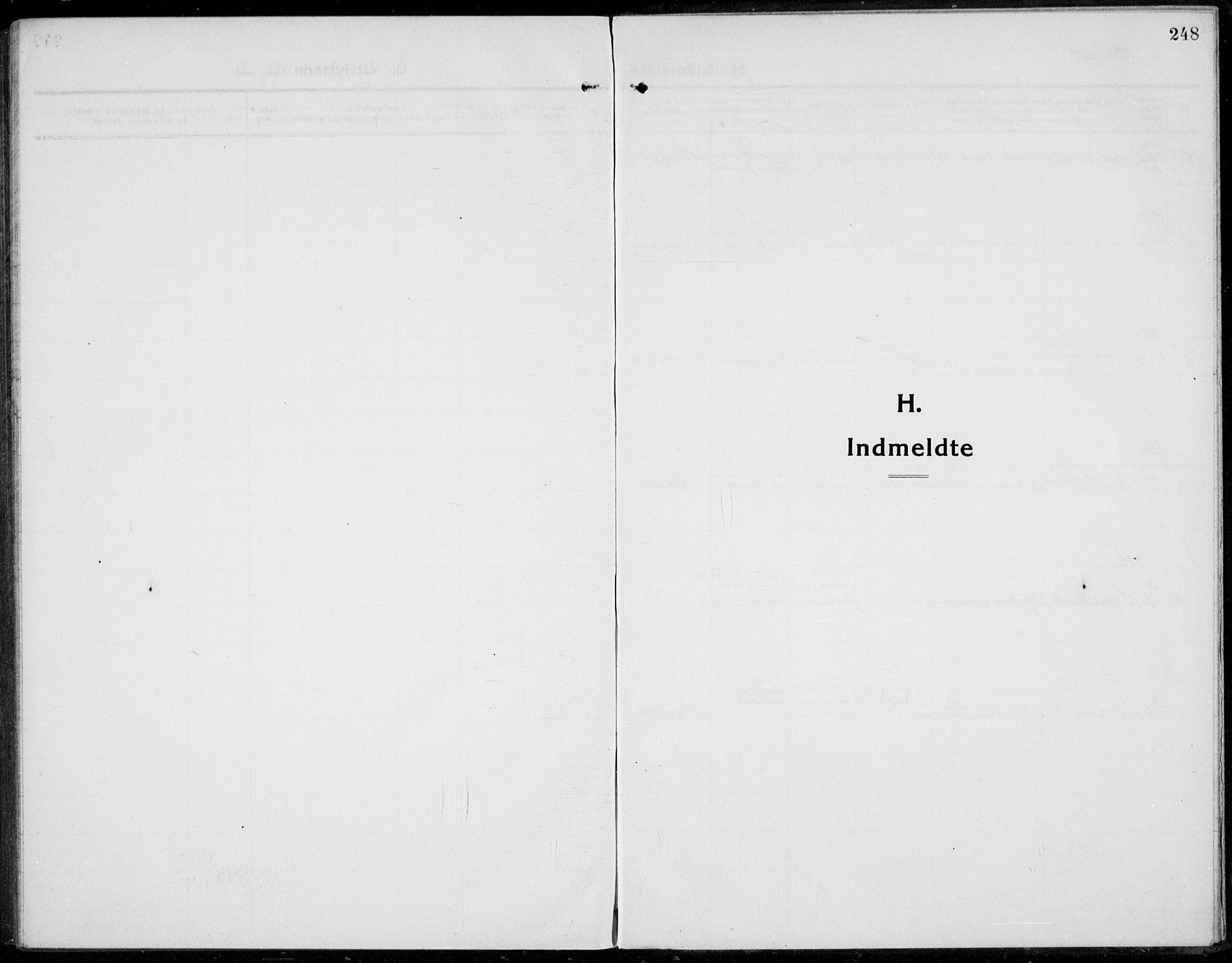 SAH, Jevnaker prestekontor, Ministerialbok nr. 12, 1914-1924, s. 248