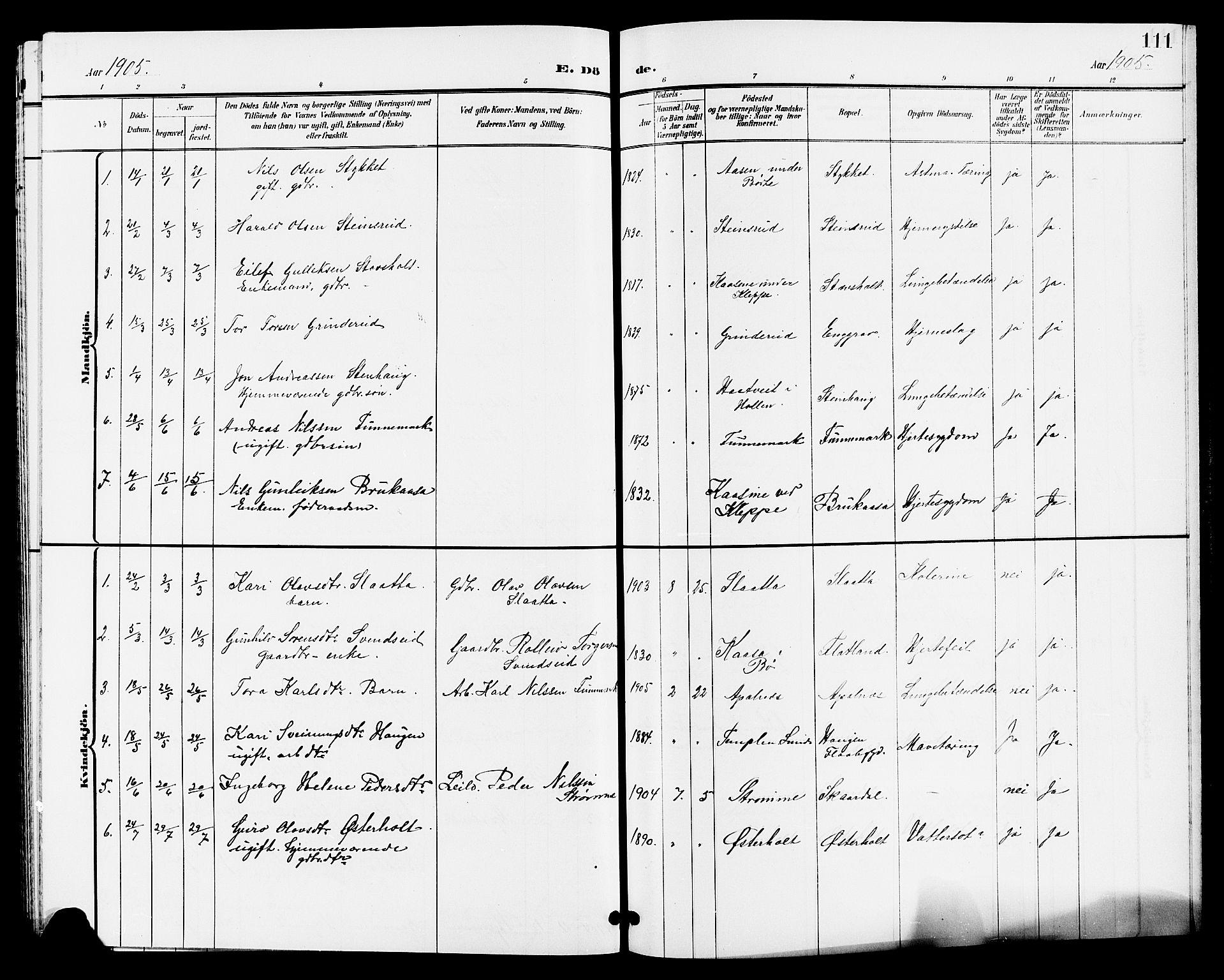 SAKO, Lunde kirkebøker, G/Ga/L0003: Klokkerbok nr. I 3, 1896-1905, s. 111