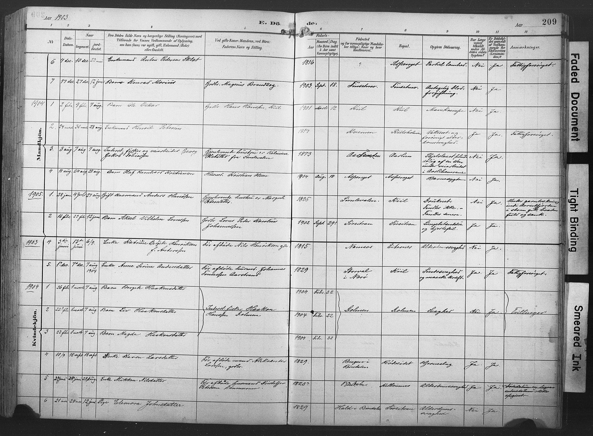 SAT, Ministerialprotokoller, klokkerbøker og fødselsregistre - Nord-Trøndelag, 789/L0706: Klokkerbok nr. 789C01, 1888-1931, s. 209