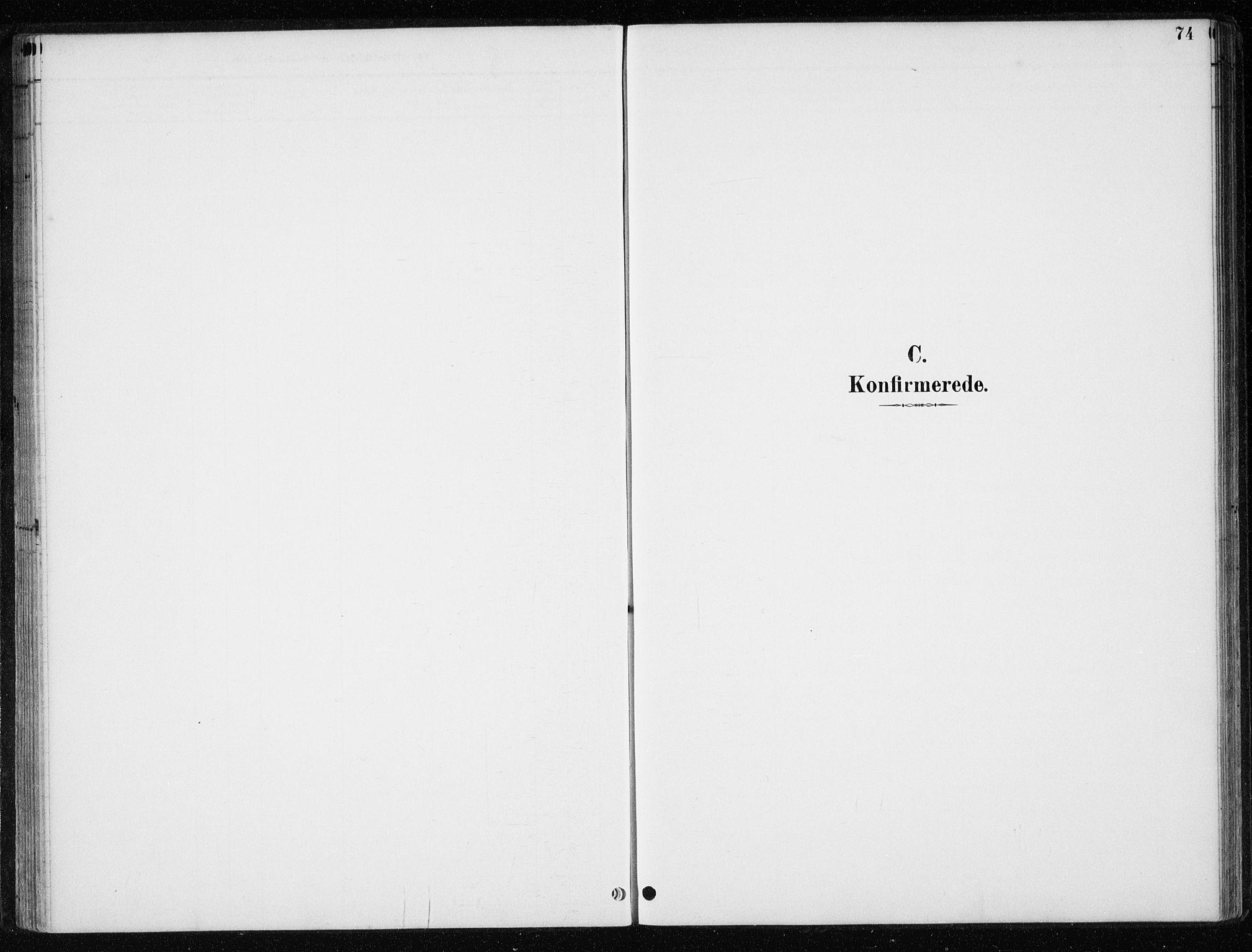 SAT, Ministerialprotokoller, klokkerbøker og fødselsregistre - Nord-Trøndelag, 710/L0096: Klokkerbok nr. 710C01, 1892-1925, s. 74