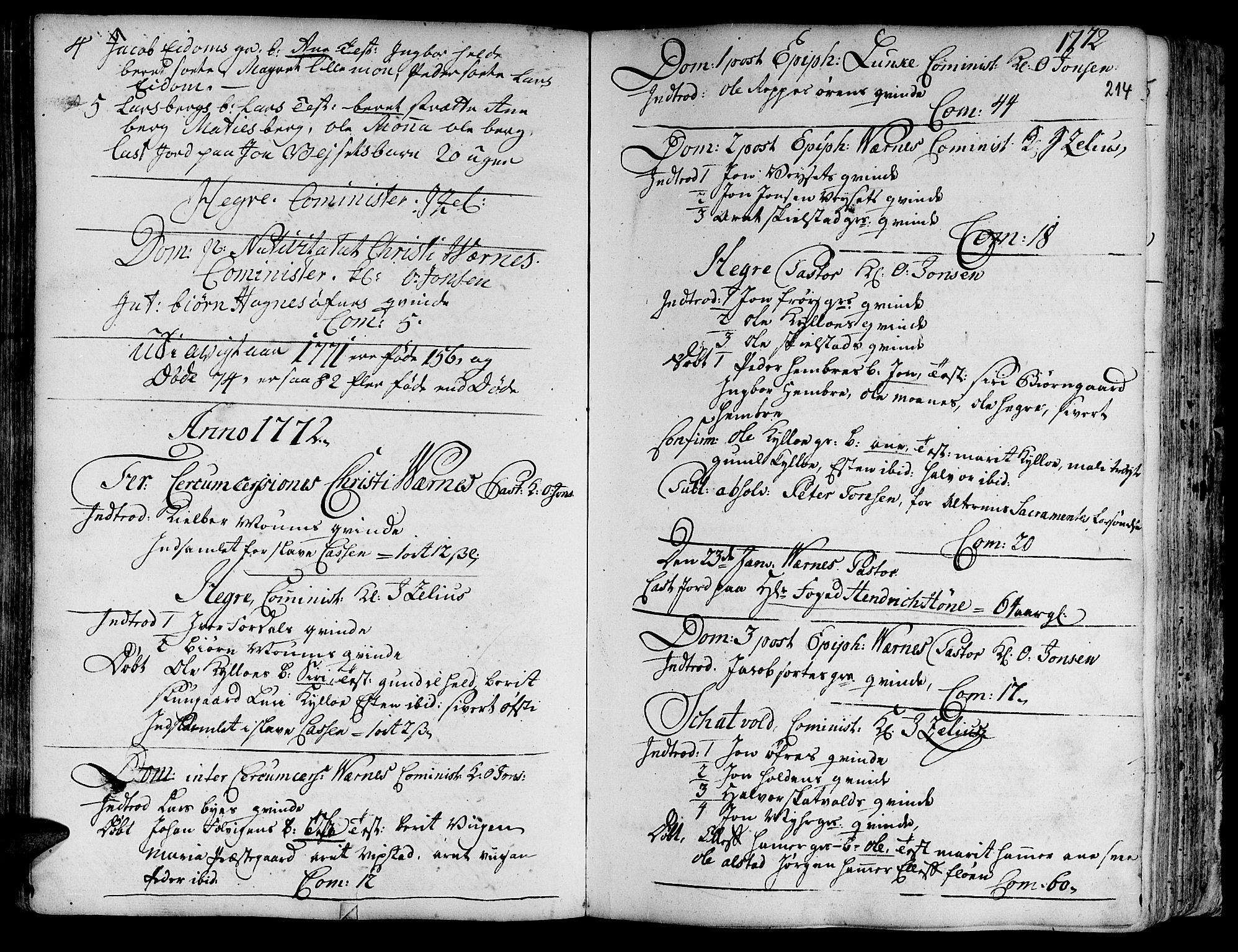 SAT, Ministerialprotokoller, klokkerbøker og fødselsregistre - Nord-Trøndelag, 709/L0057: Ministerialbok nr. 709A05, 1755-1780, s. 214