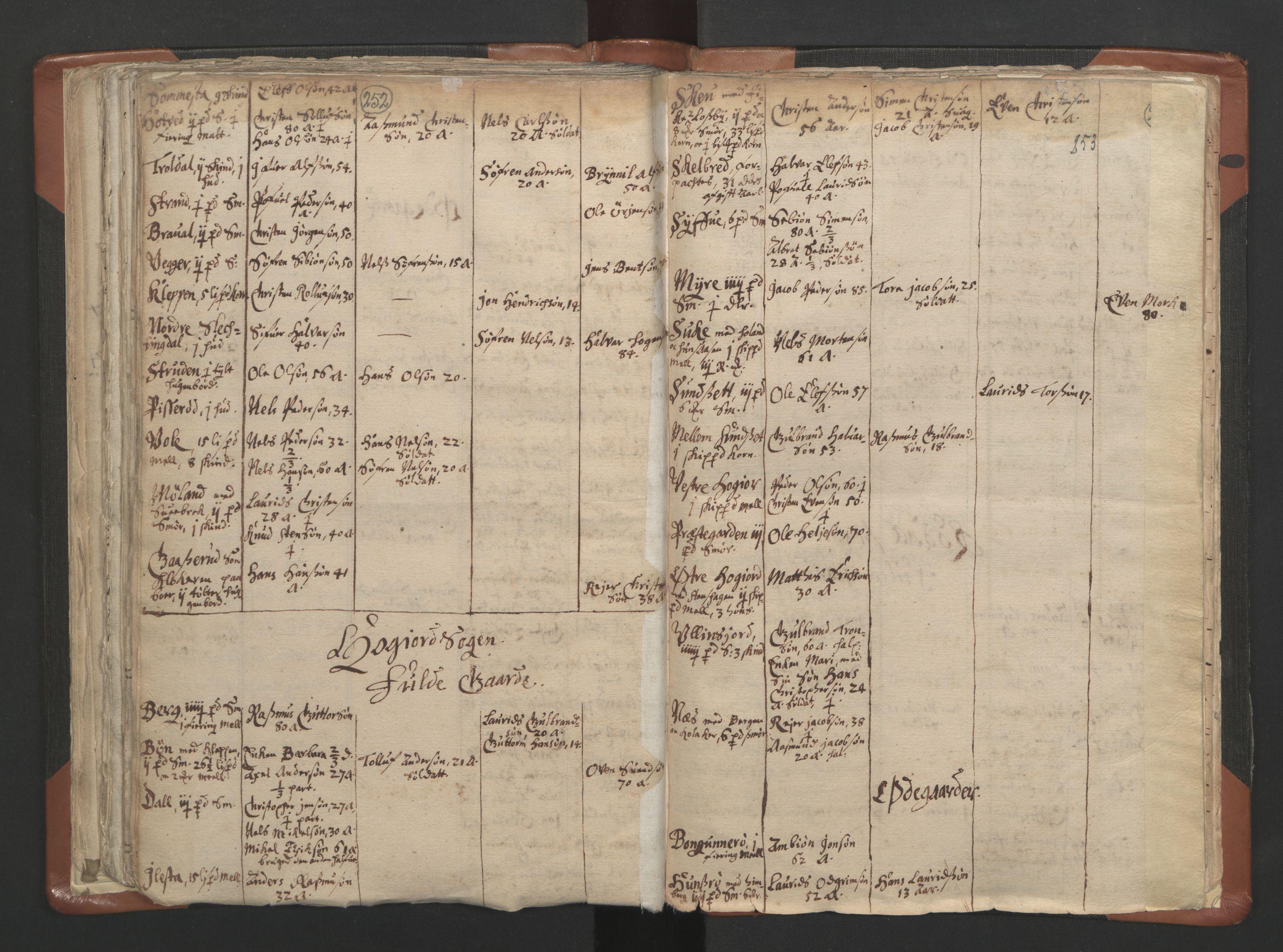 RA, Sogneprestenes manntall 1664-1666, nr. 10: Tønsberg prosti, 1664-1666, s. 252-253
