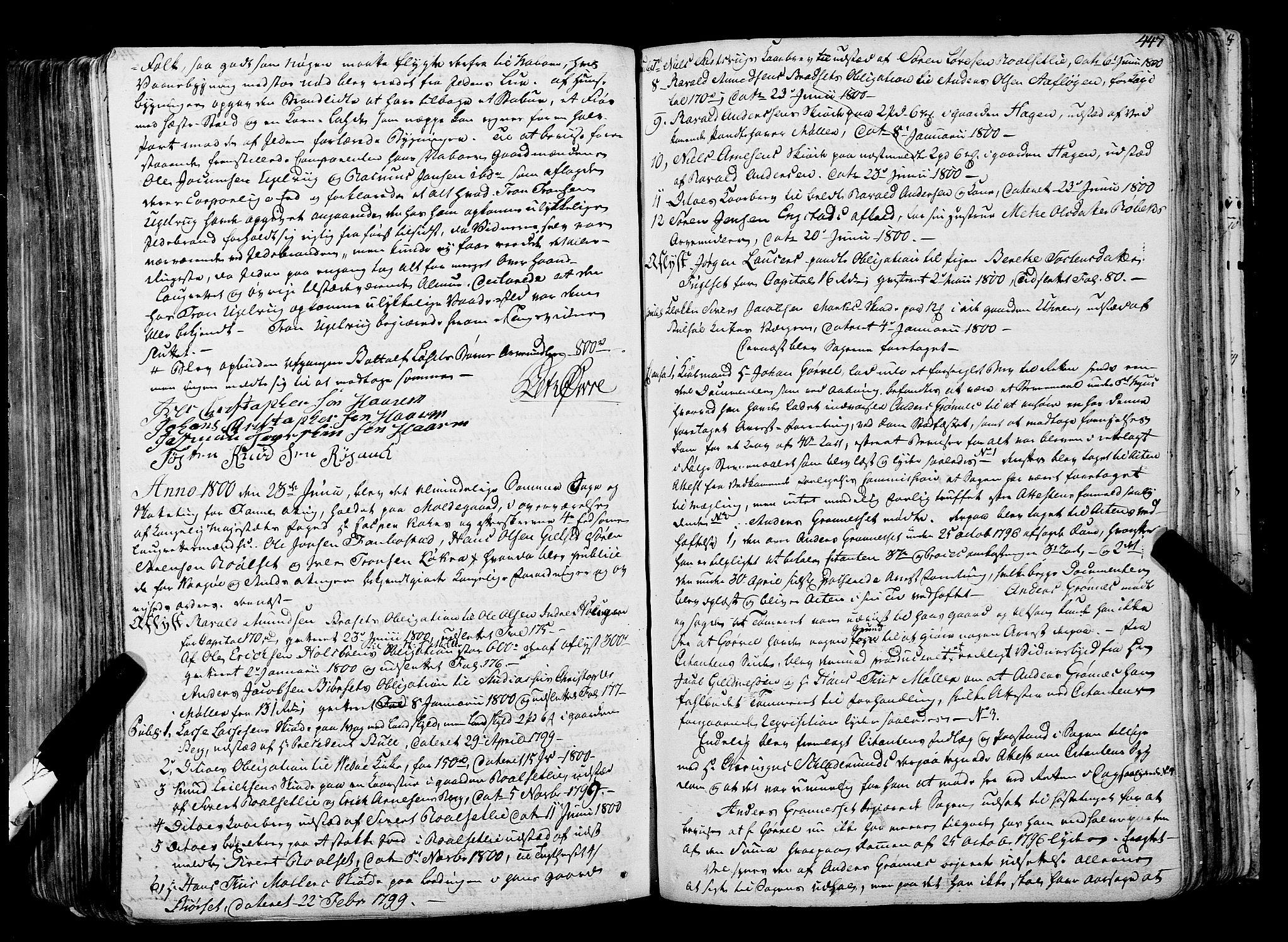 SAT, Romsdal sorenskriveri, 1/1A/L0017: Tingbok, 1789-1803, s. 446b-447a