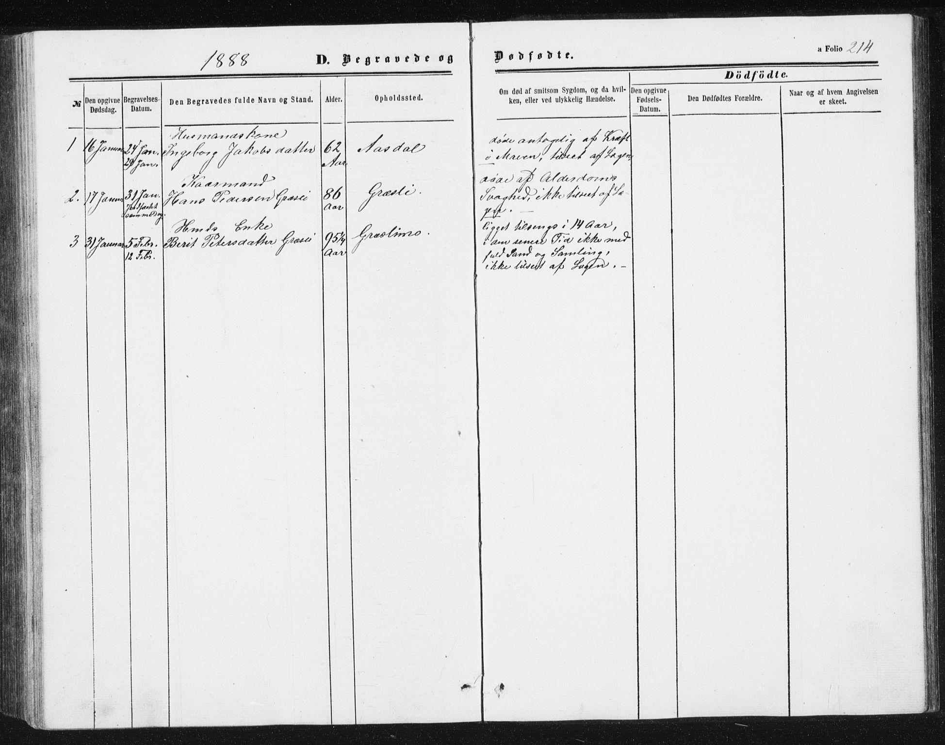 SAT, Ministerialprotokoller, klokkerbøker og fødselsregistre - Sør-Trøndelag, 698/L1166: Klokkerbok nr. 698C03, 1861-1887, s. 214