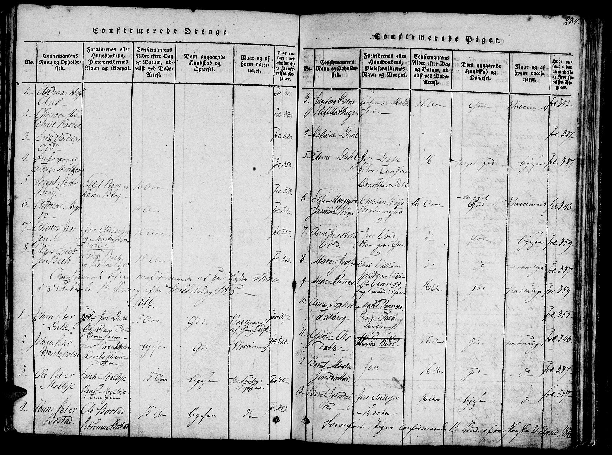 SAT, Ministerialprotokoller, klokkerbøker og fødselsregistre - Sør-Trøndelag, 602/L0135: Klokkerbok nr. 602C03, 1815-1832, s. 234