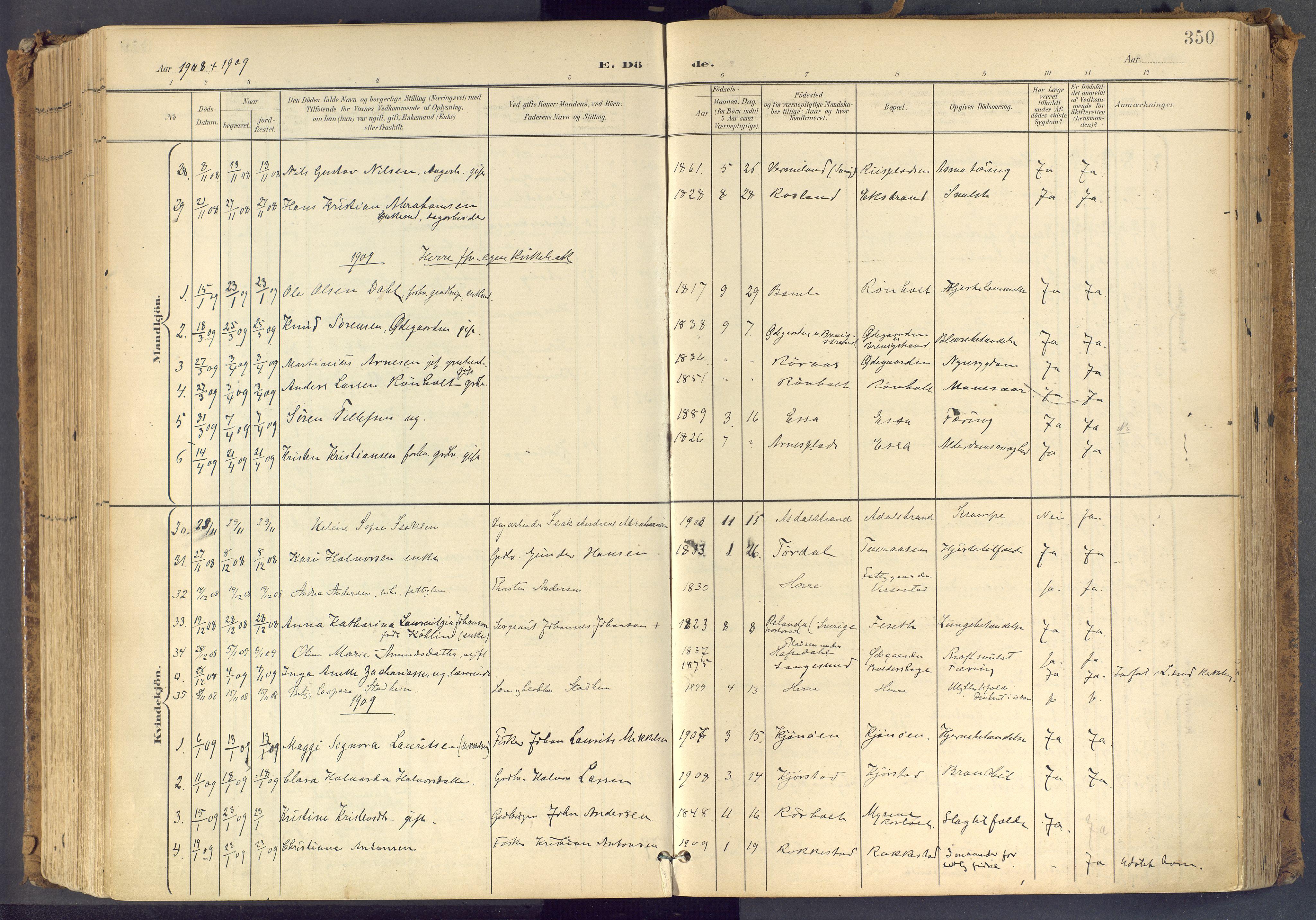 SAKO, Bamble kirkebøker, F/Fa/L0009: Ministerialbok nr. I 9, 1901-1917, s. 350