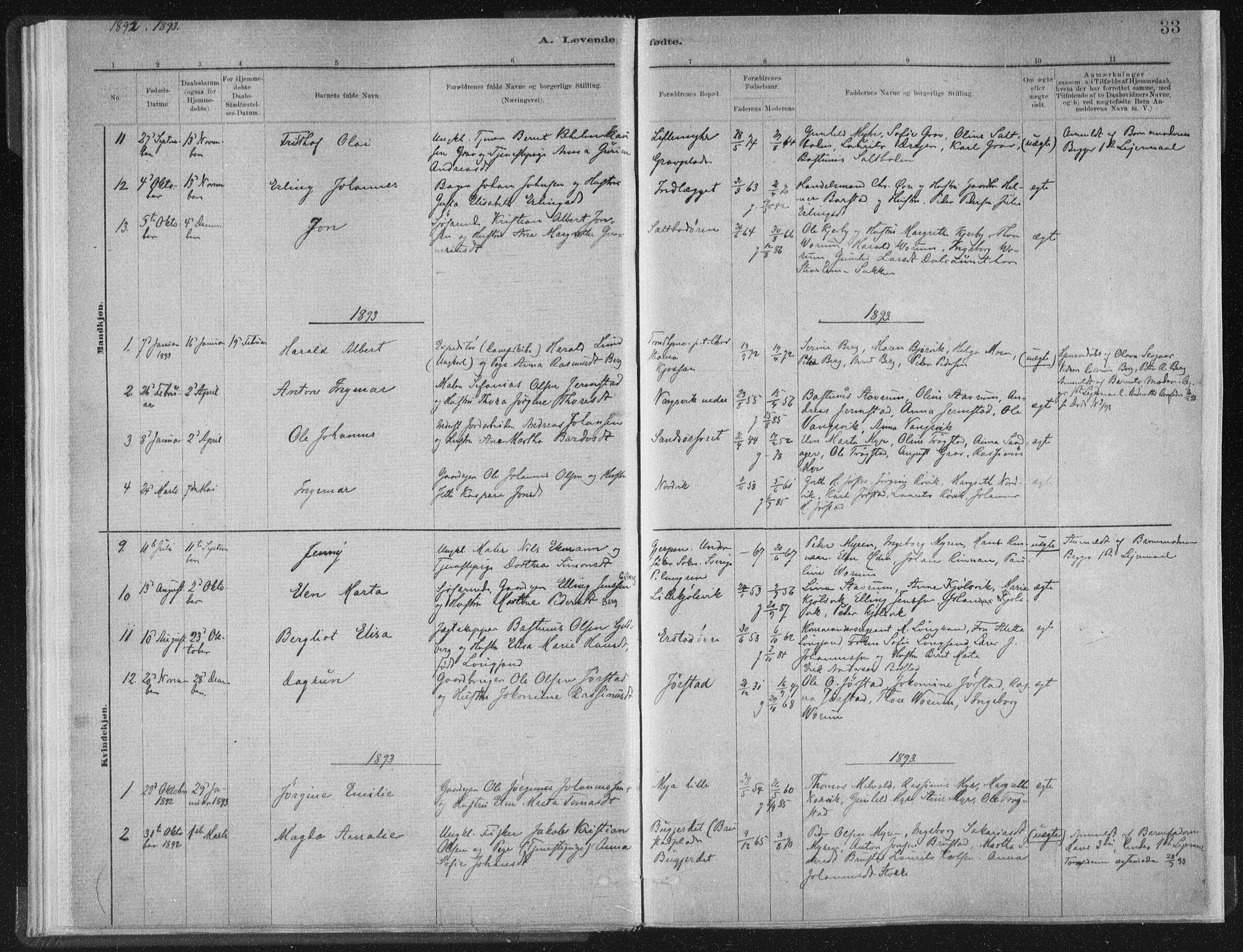 SAT, Ministerialprotokoller, klokkerbøker og fødselsregistre - Nord-Trøndelag, 722/L0220: Ministerialbok nr. 722A07, 1881-1908, s. 33