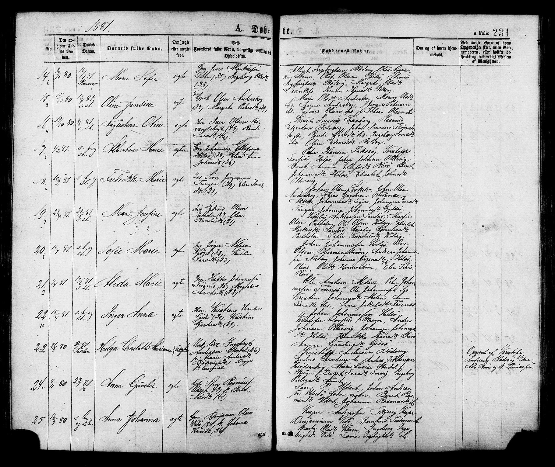 SAT, Ministerialprotokoller, klokkerbøker og fødselsregistre - Sør-Trøndelag, 634/L0532: Ministerialbok nr. 634A08, 1871-1881, s. 231