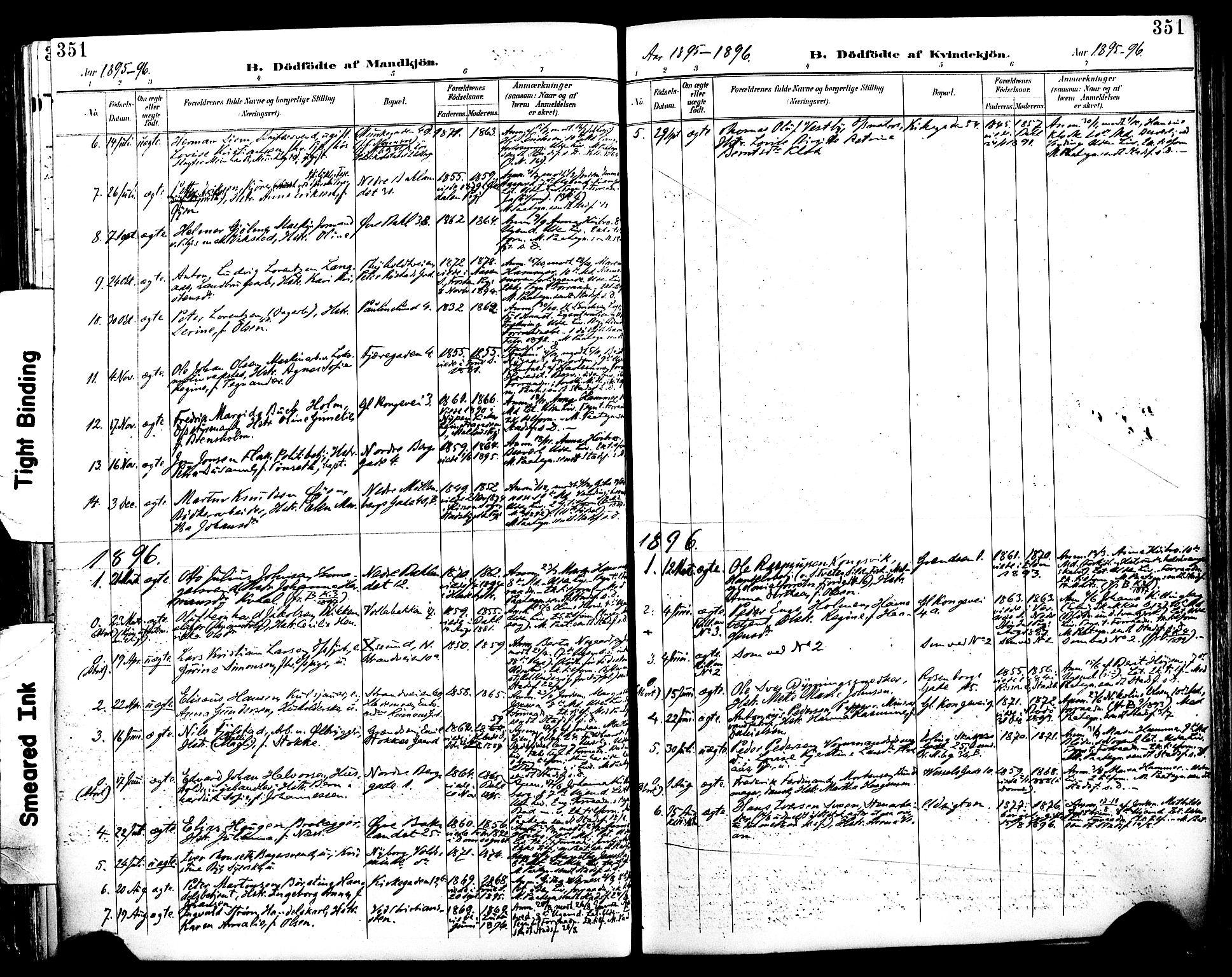 SAT, Ministerialprotokoller, klokkerbøker og fødselsregistre - Sør-Trøndelag, 604/L0197: Ministerialbok nr. 604A18, 1893-1900, s. 351