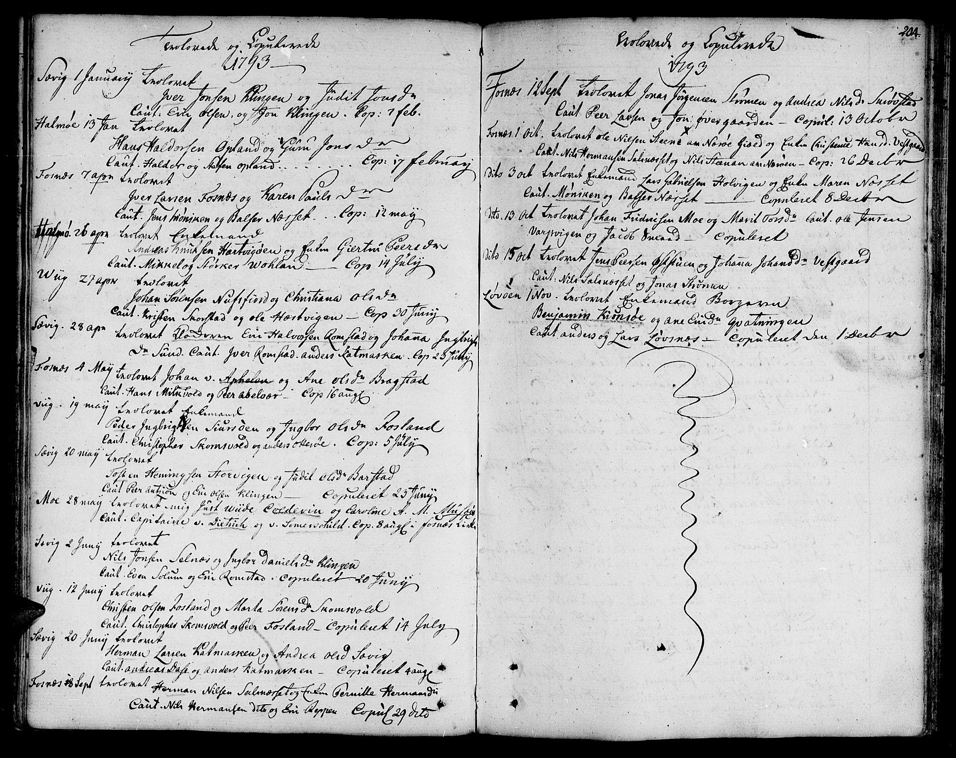 SAT, Ministerialprotokoller, klokkerbøker og fødselsregistre - Nord-Trøndelag, 773/L0608: Ministerialbok nr. 773A02, 1784-1816, s. 204