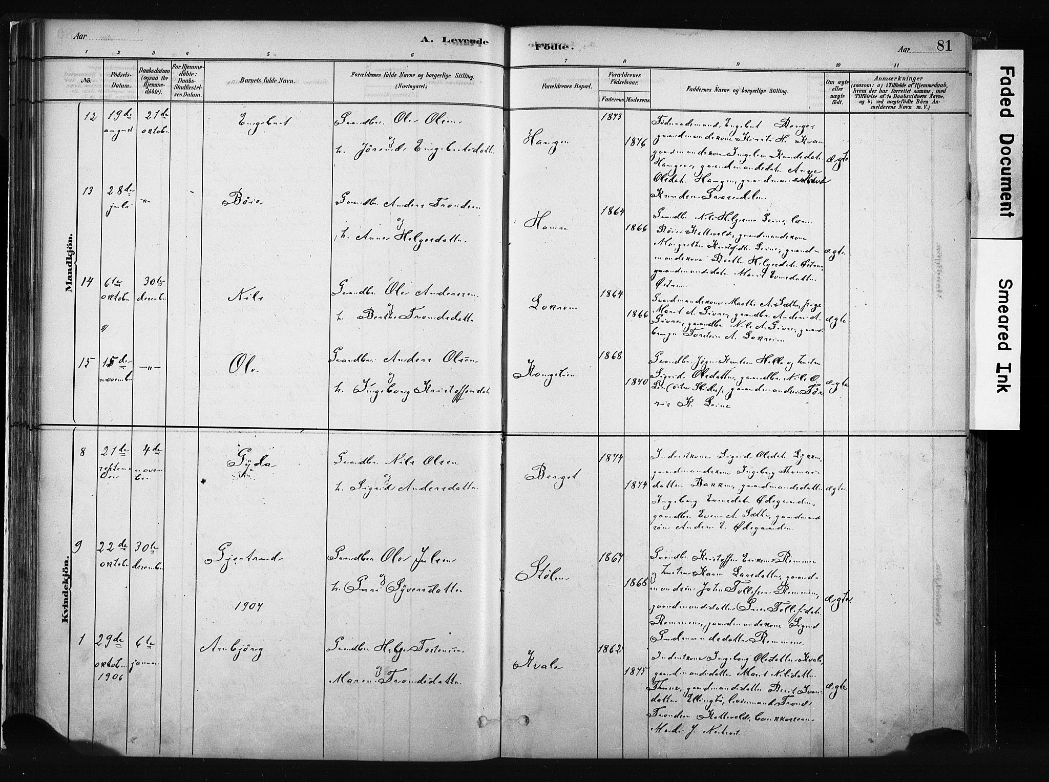 SAH, Vang prestekontor, Valdres, Ministerialbok nr. 8, 1882-1910, s. 81