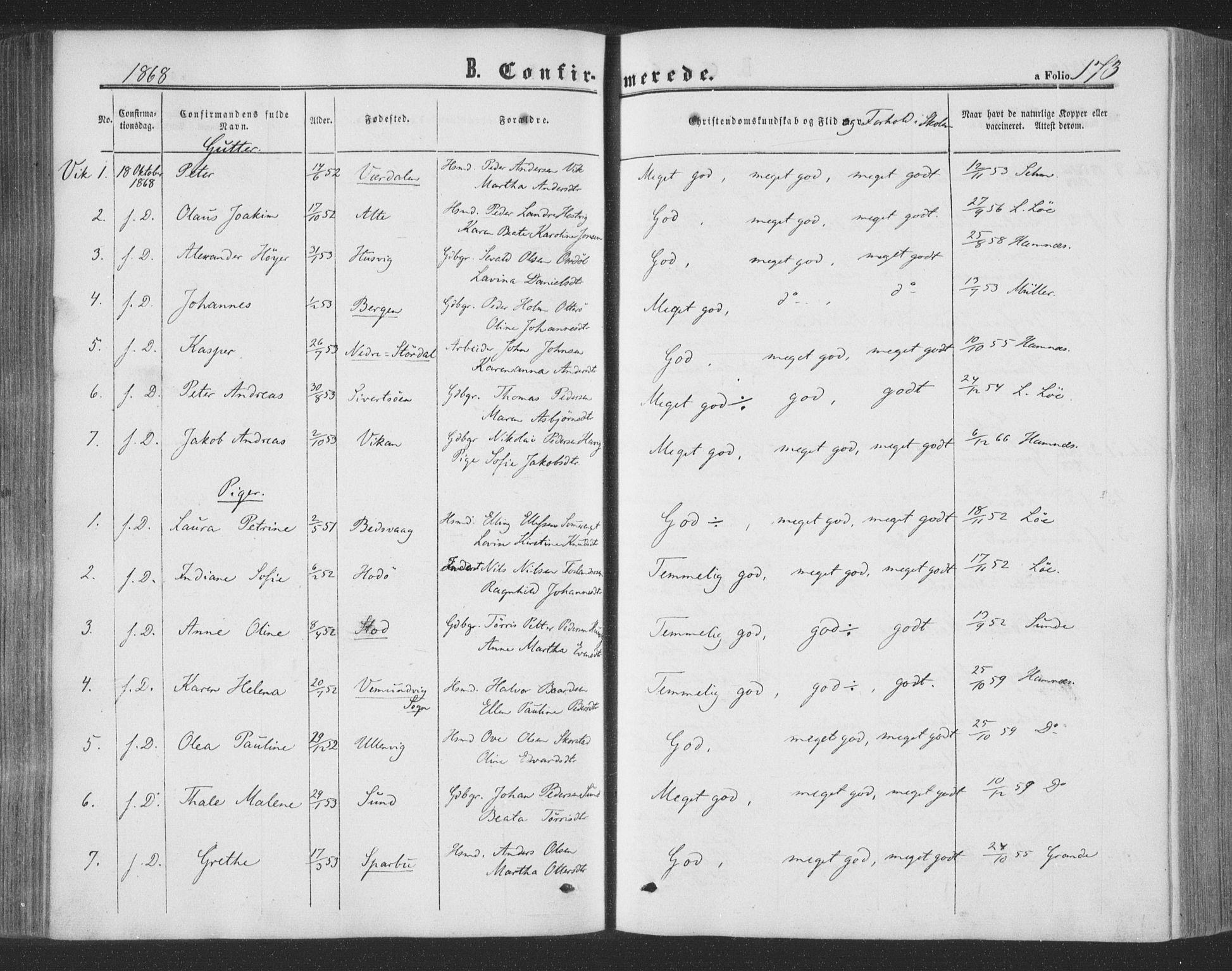 SAT, Ministerialprotokoller, klokkerbøker og fødselsregistre - Nord-Trøndelag, 773/L0615: Ministerialbok nr. 773A06, 1857-1870, s. 173