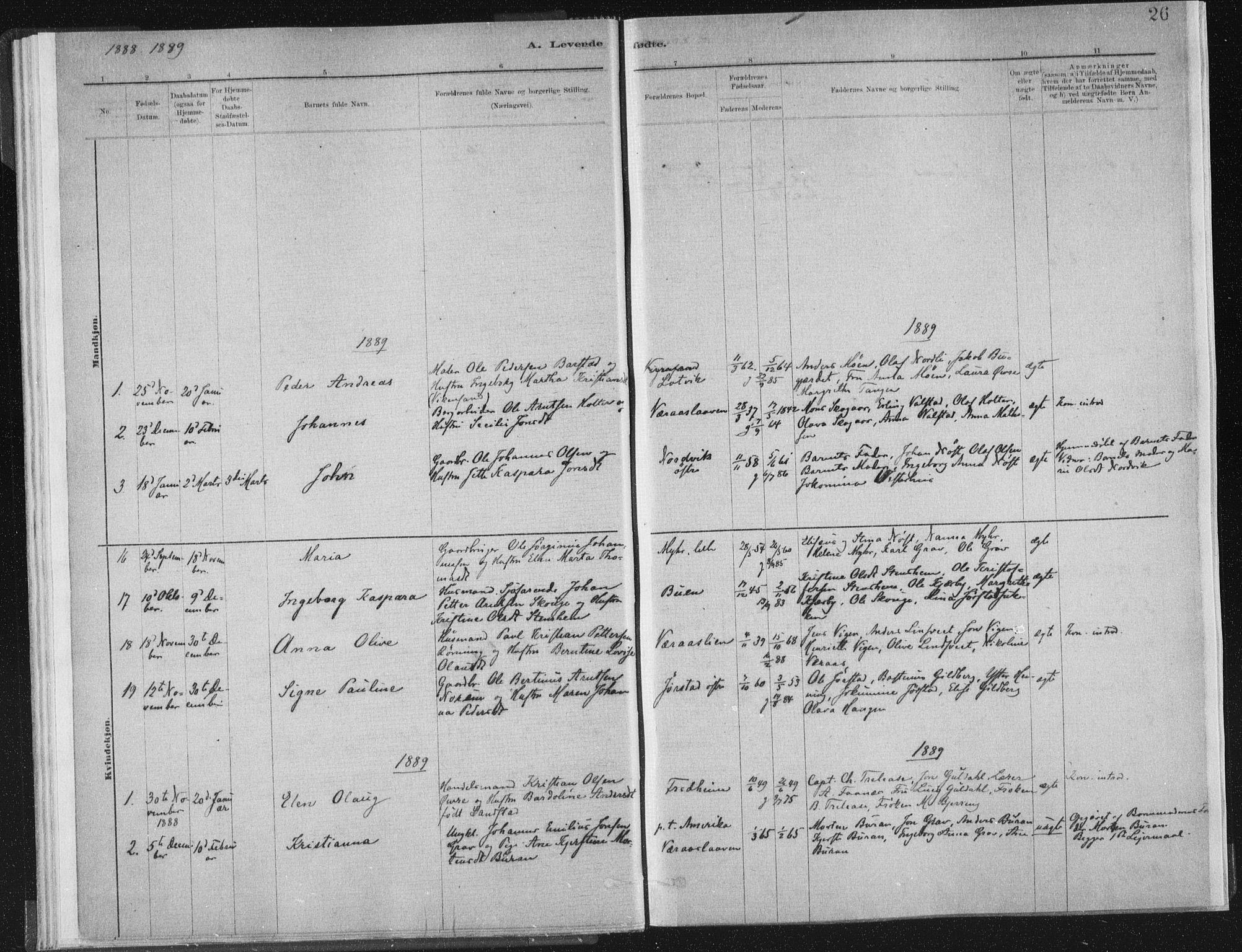SAT, Ministerialprotokoller, klokkerbøker og fødselsregistre - Nord-Trøndelag, 722/L0220: Ministerialbok nr. 722A07, 1881-1908, s. 26