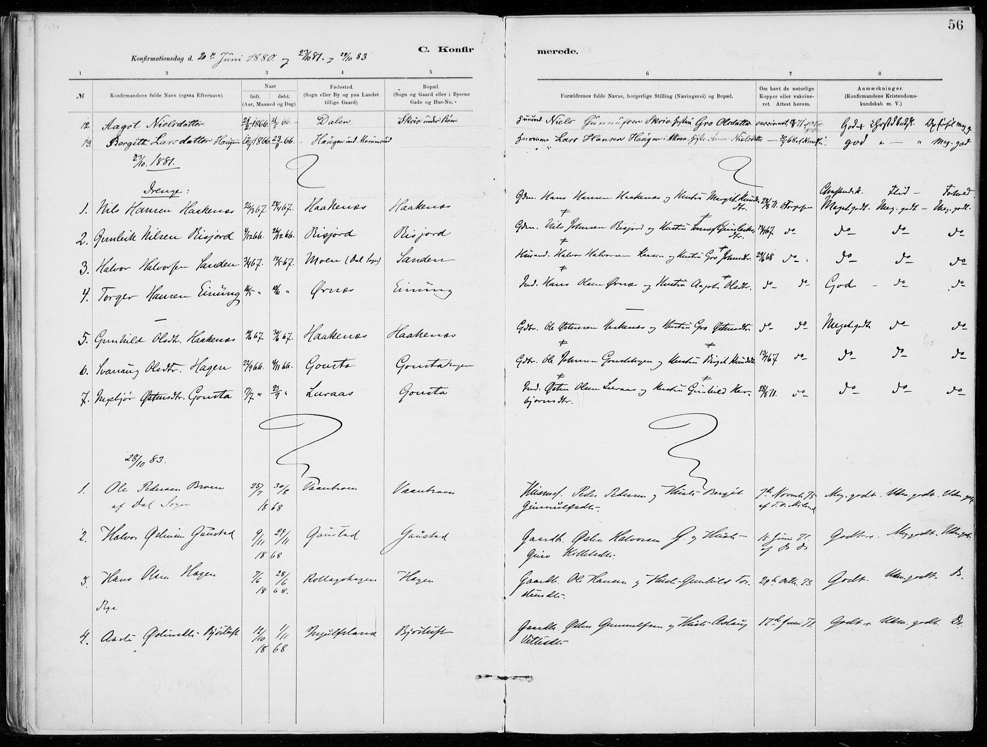 SAKO, Tinn kirkebøker, F/Fb/L0002: Ministerialbok nr. II 2, 1878-1917, s. 56