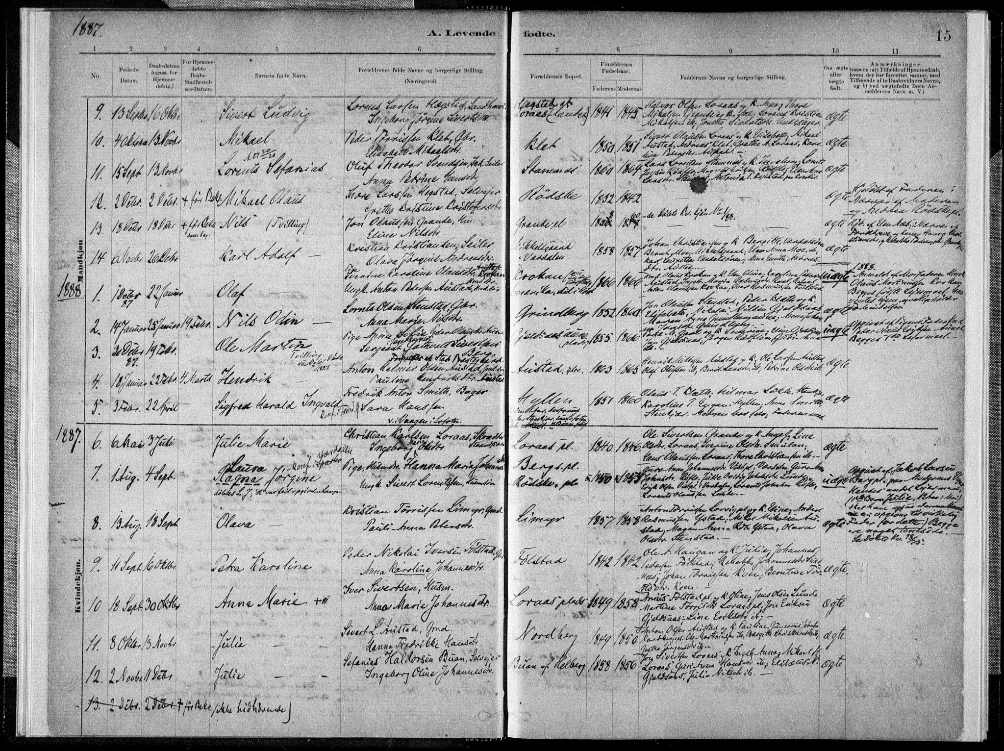 SAT, Ministerialprotokoller, klokkerbøker og fødselsregistre - Nord-Trøndelag, 731/L0309: Ministerialbok nr. 731A01, 1879-1918, s. 15