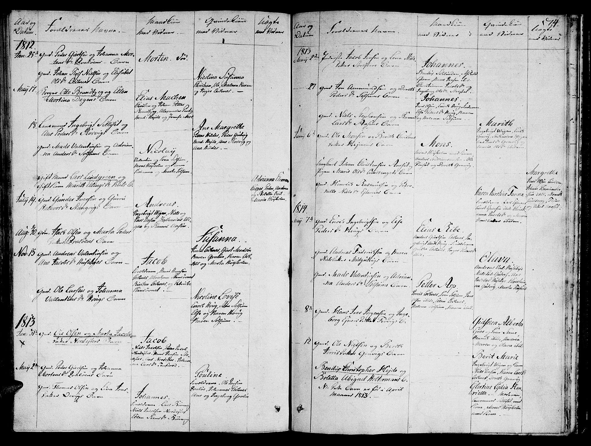 SAT, Ministerialprotokoller, klokkerbøker og fødselsregistre - Nord-Trøndelag, 780/L0633: Ministerialbok nr. 780A02 /2, 1806-1814, s. 74