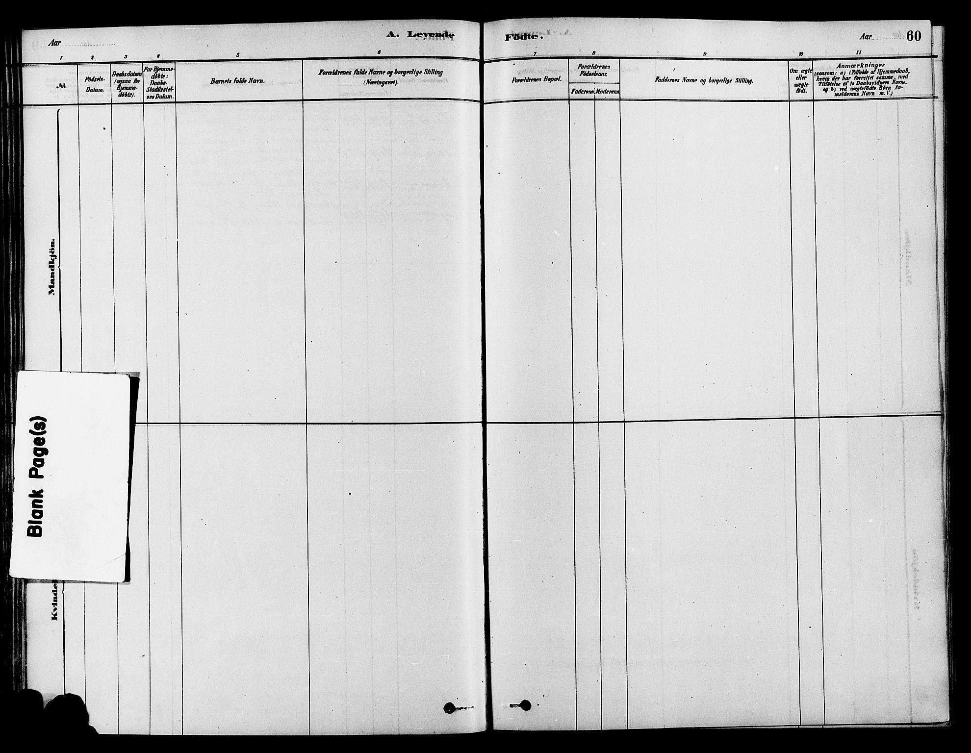SAH, Søndre Land prestekontor, K/L0002: Ministerialbok nr. 2, 1878-1894, s. 60