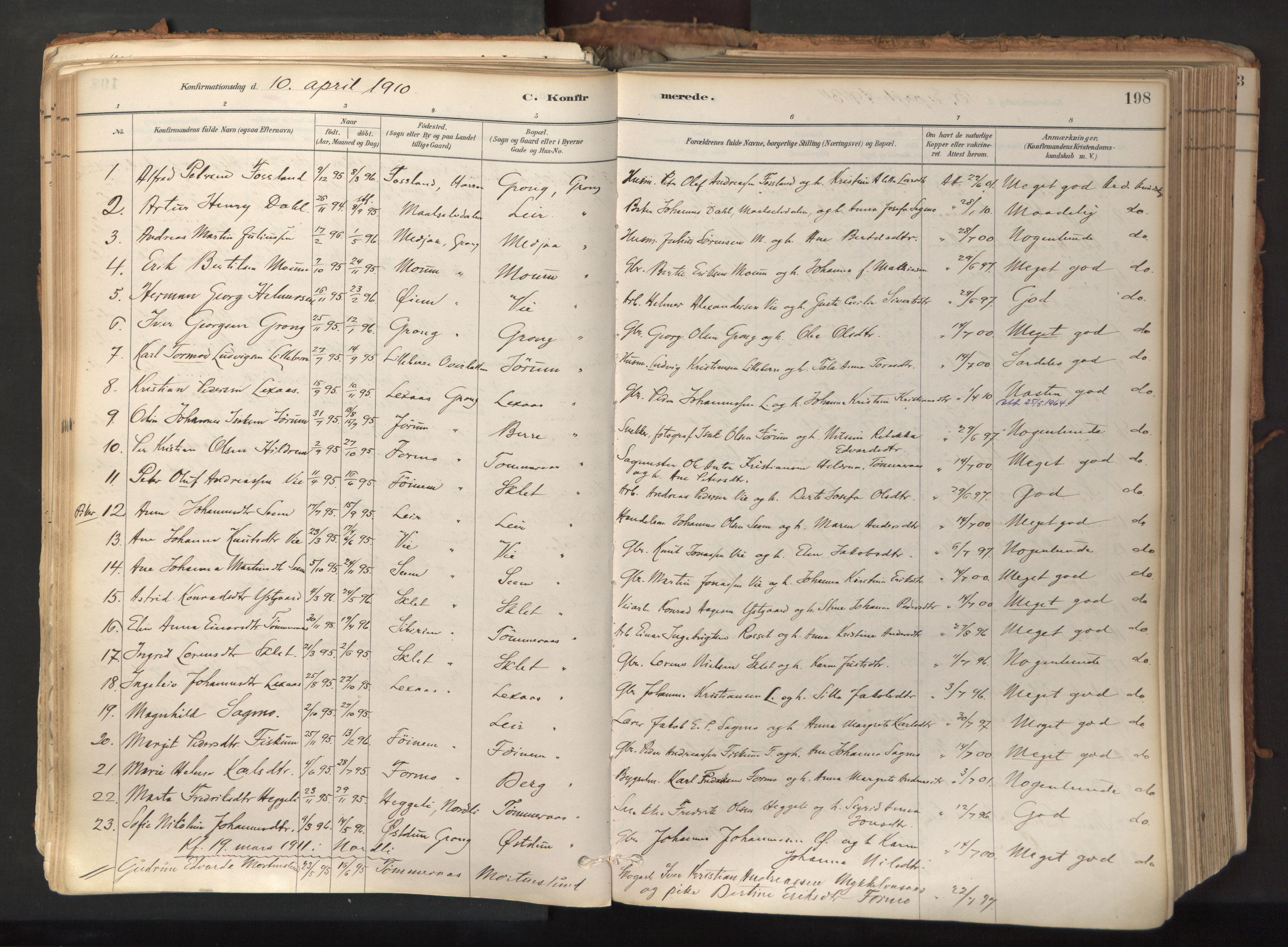 SAT, Ministerialprotokoller, klokkerbøker og fødselsregistre - Nord-Trøndelag, 758/L0519: Ministerialbok nr. 758A04, 1880-1926, s. 198