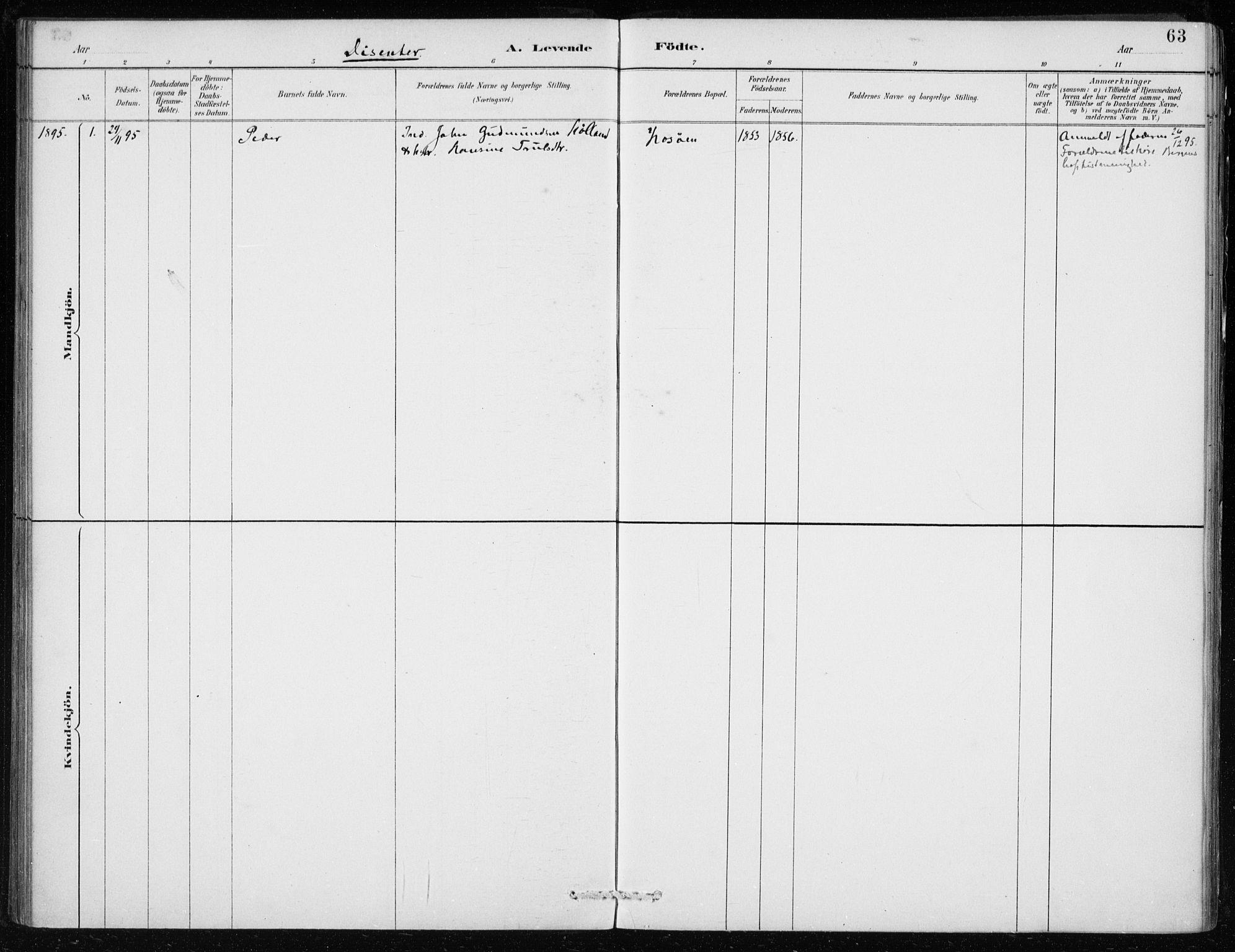 SAB, Lindås Sokneprestembete, H/Haa: Ministerialbok nr. F  1, 1886-1897, s. 63