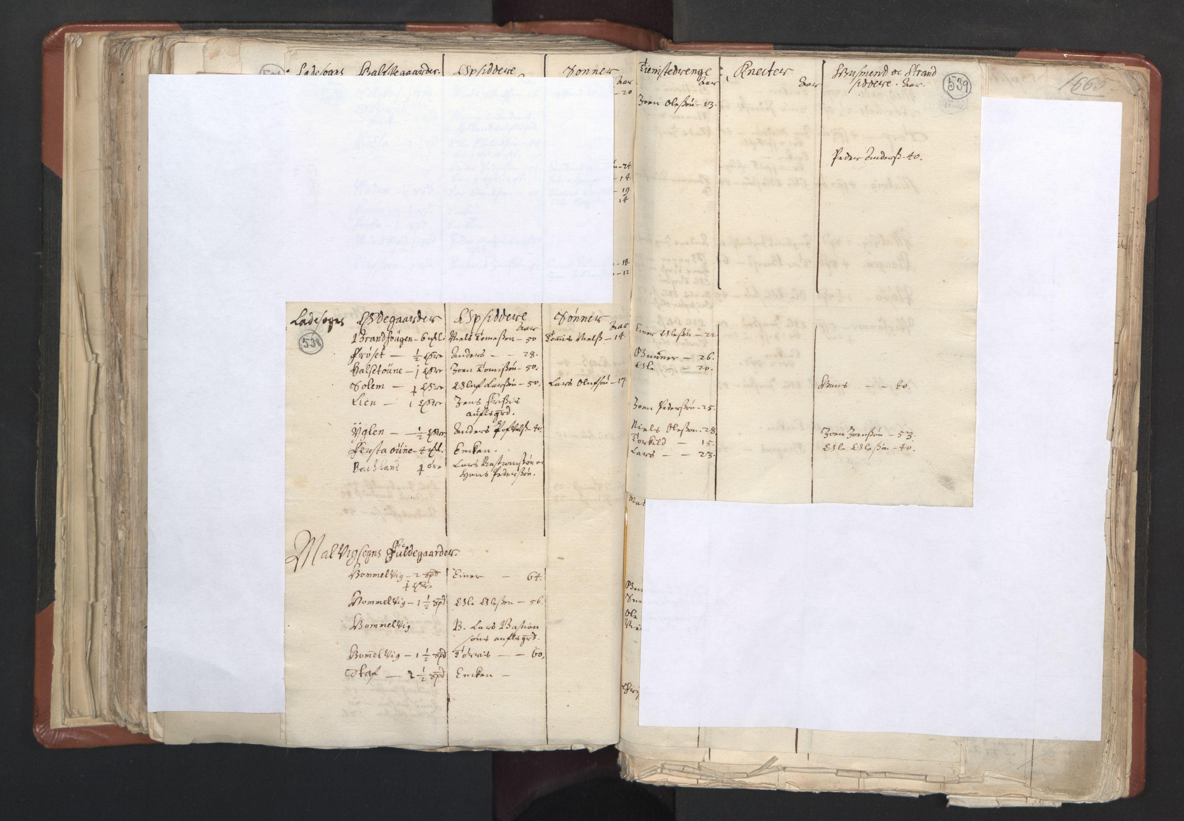 RA, Sogneprestenes manntall 1664-1666, nr. 31: Dalane prosti, 1664-1666, s. 538-539