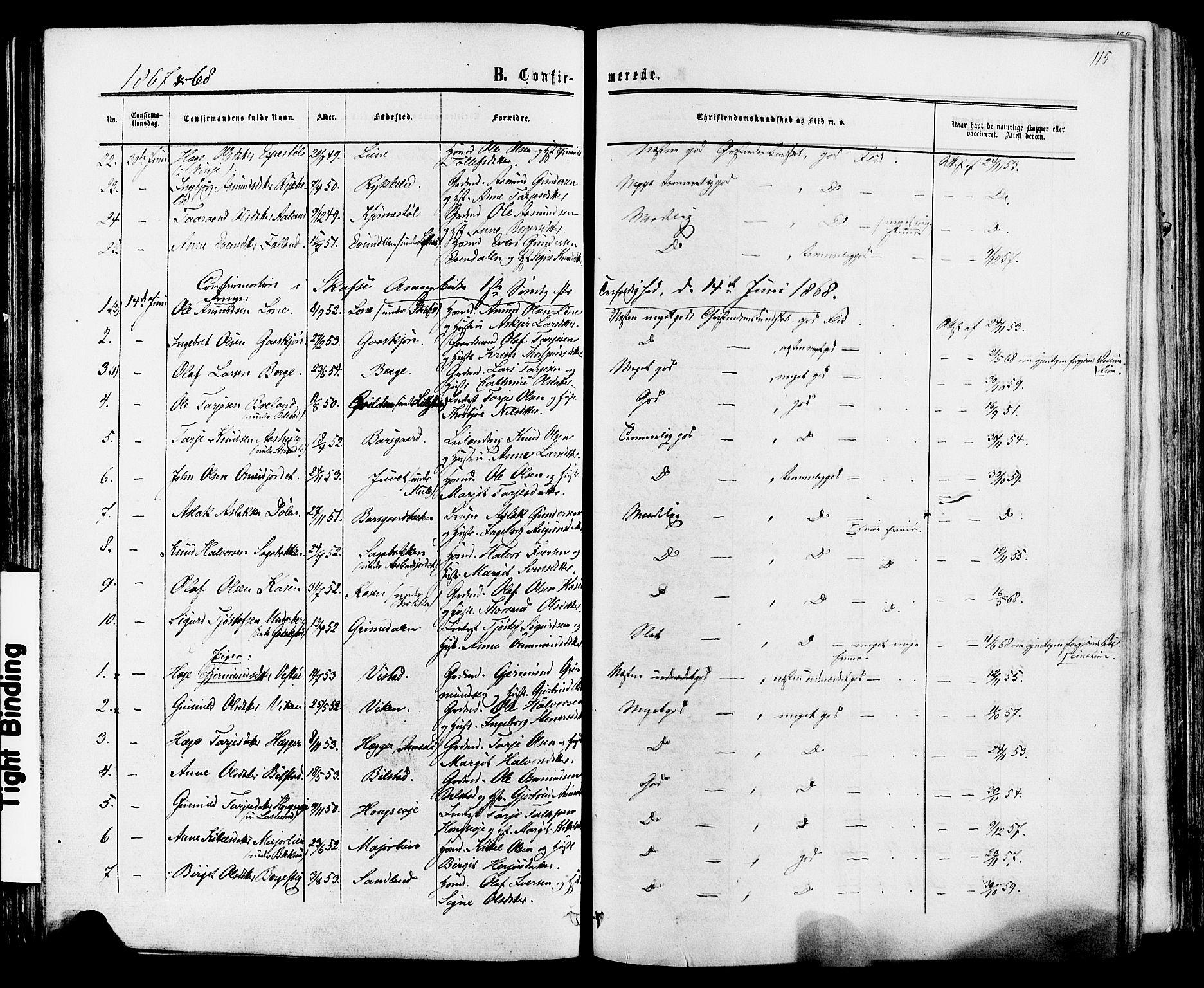 SAKO, Mo kirkebøker, F/Fa/L0006: Ministerialbok nr. I 6, 1865-1885, s. 115