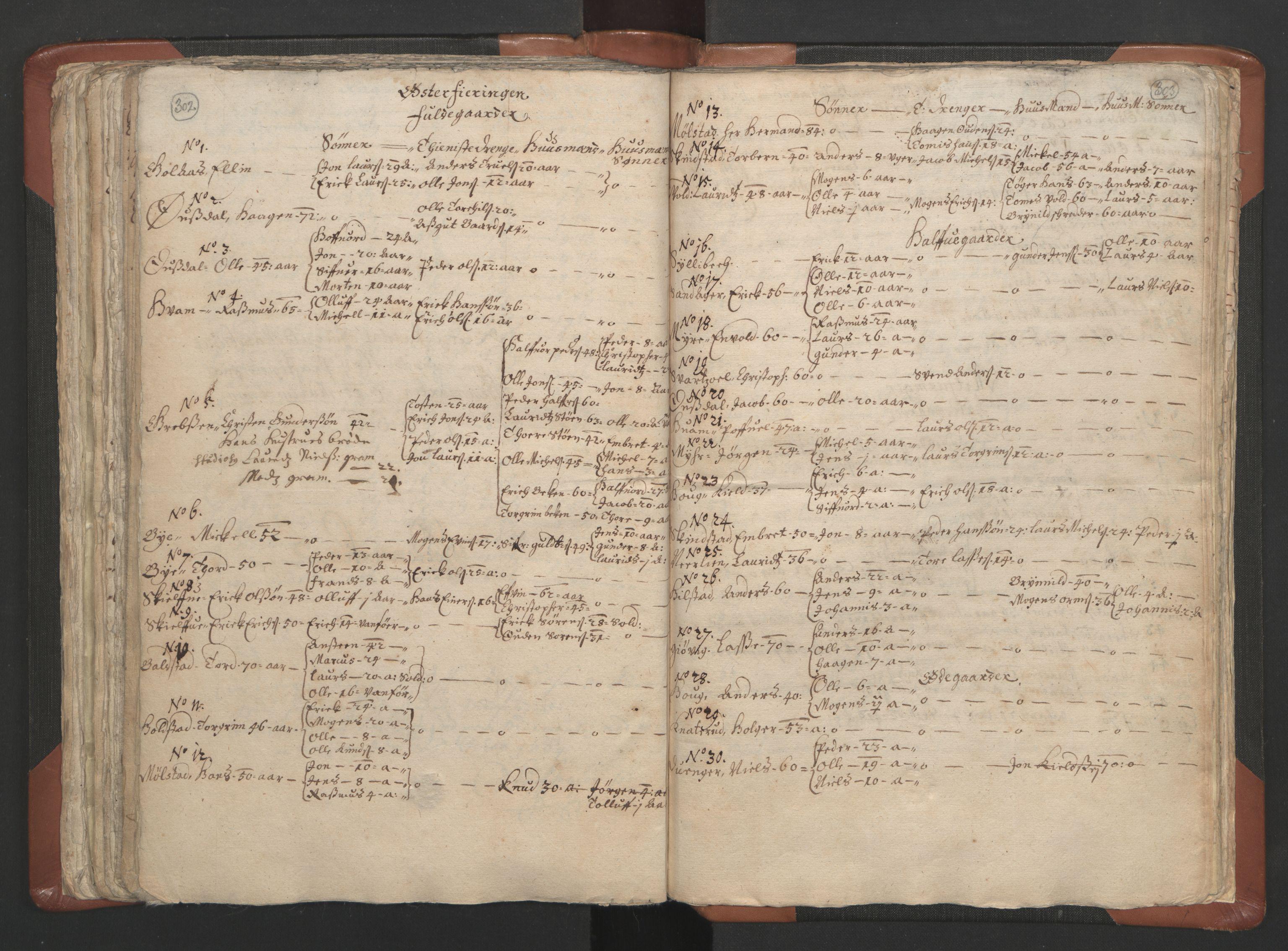 RA, Sogneprestenes manntall 1664-1666, nr. 5: Hedmark prosti, 1664-1666, s. 302-303