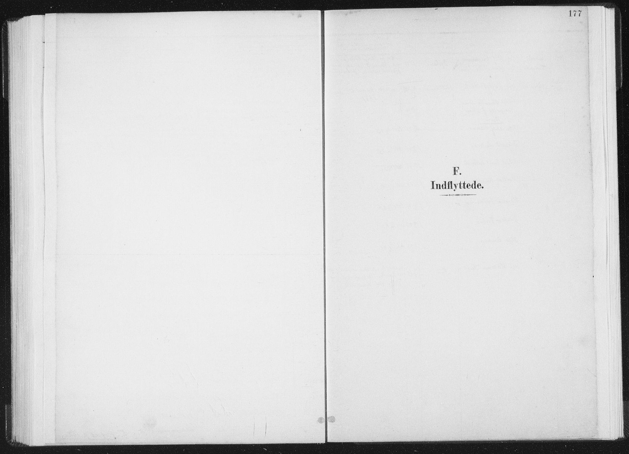SAT, Ministerialprotokoller, klokkerbøker og fødselsregistre - Nord-Trøndelag, 771/L0597: Ministerialbok nr. 771A04, 1885-1910, s. 177